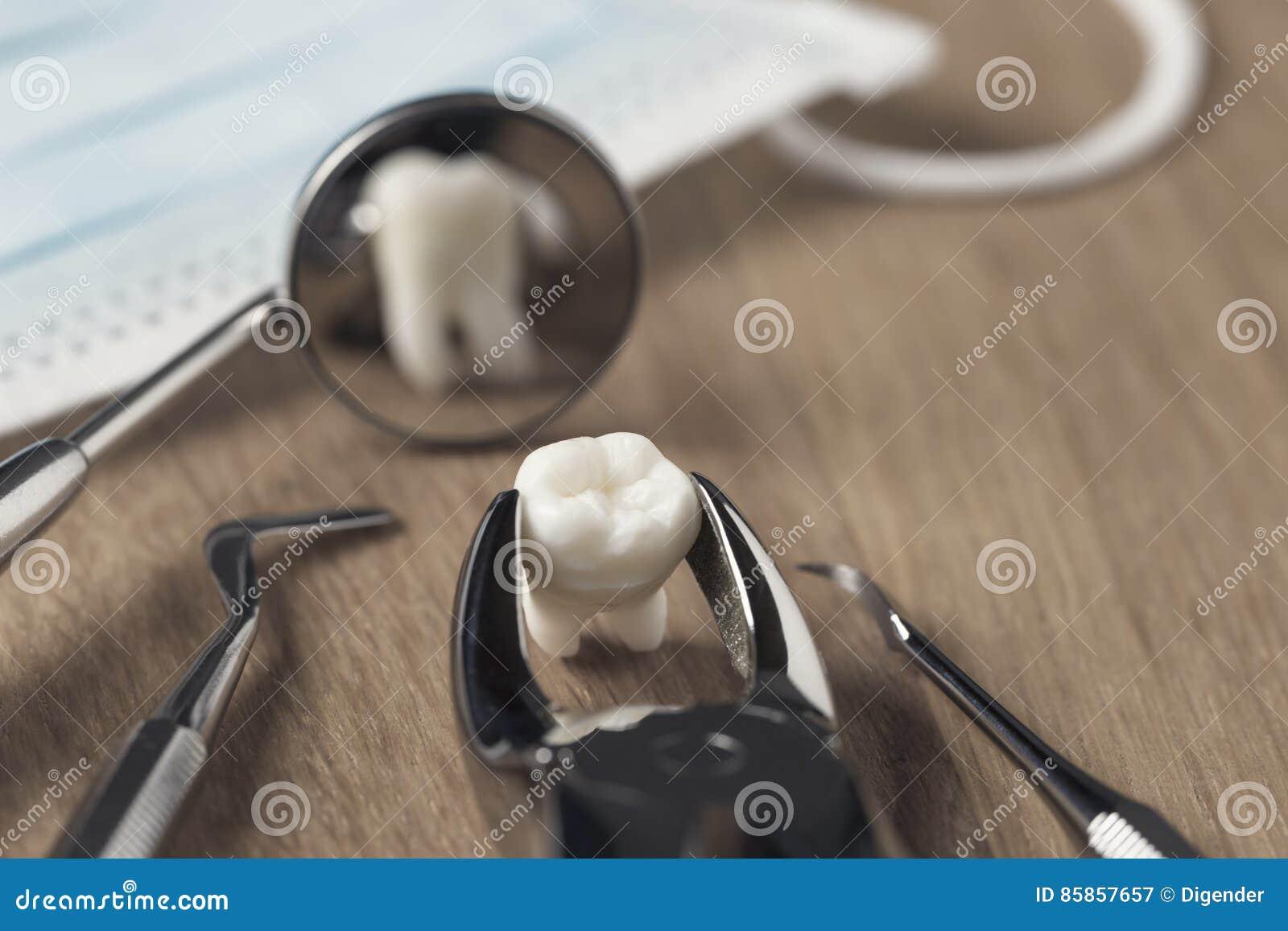 Ząb w forceps na stole