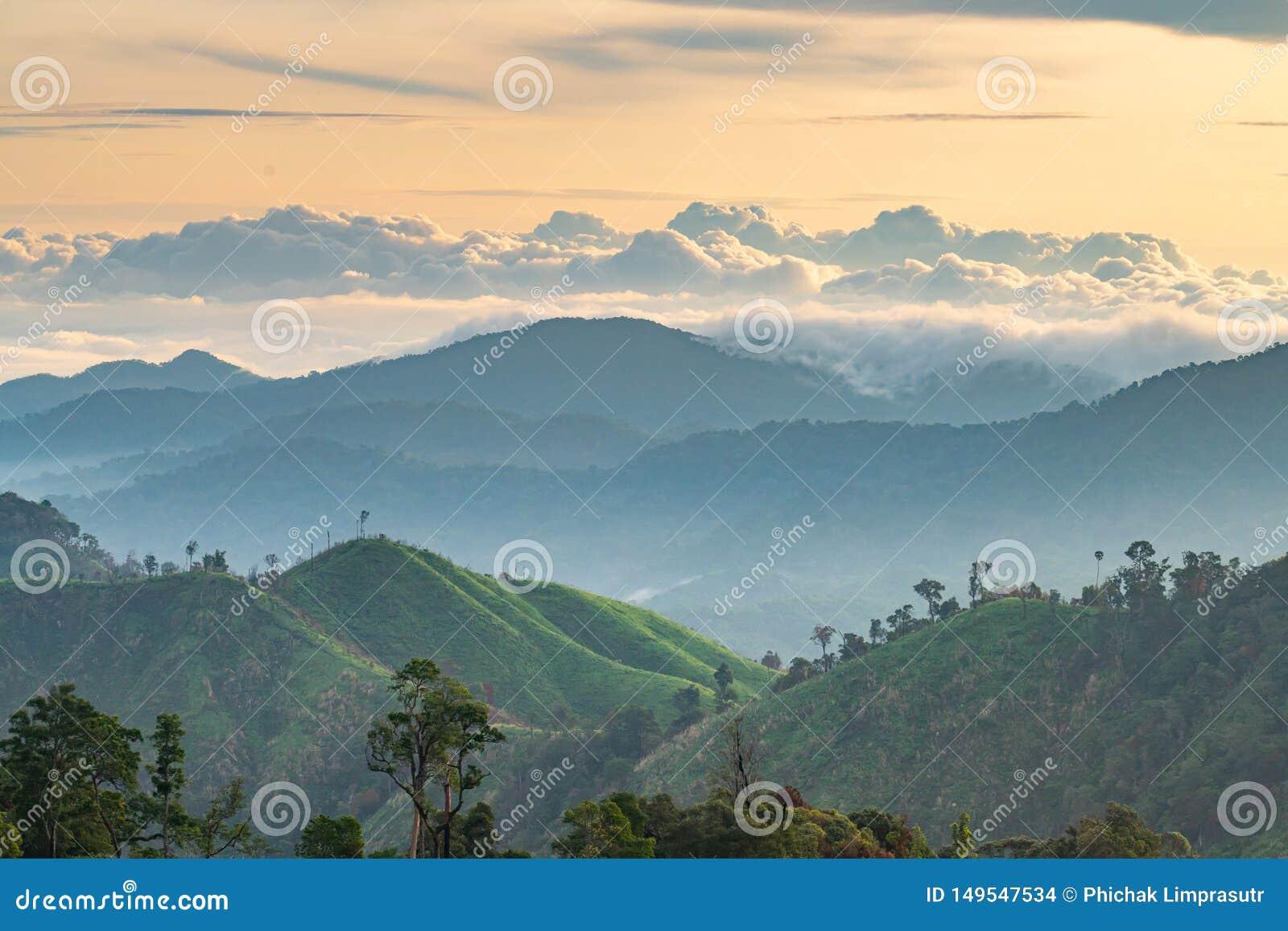 Złożoność góry krajobrazowa i drzewna różnorodność las z pięknymi niskimi chmurami na wierzchołku - ranku złoty światło