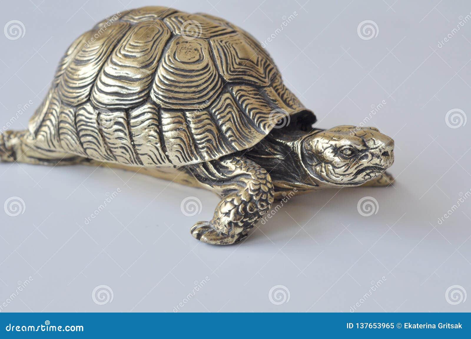 Złociści feng-shui żółwie