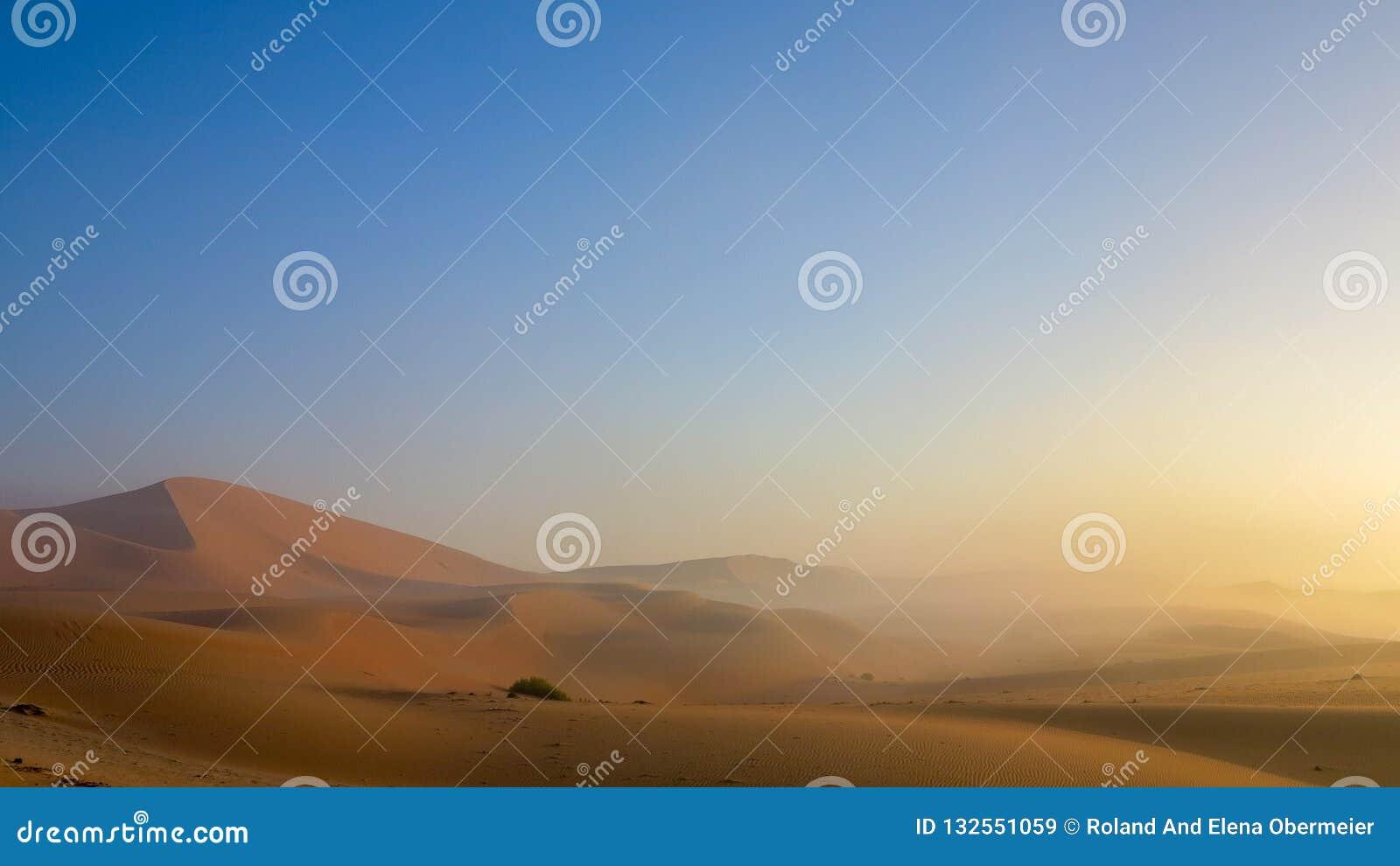 Złota godzina ranku mgła w Pustej ćwiartce