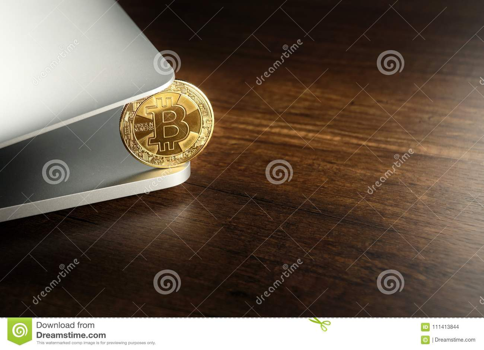 Złoty Bitcoins Cryptocurrency na laptopie