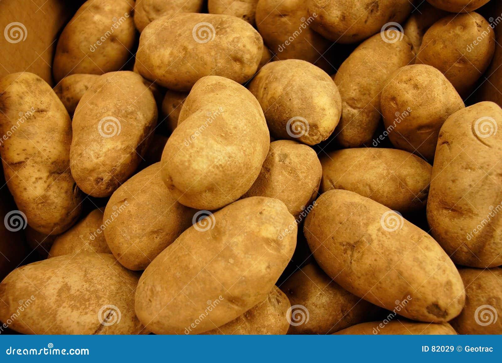 Złoty rdzawienia ziemniaka