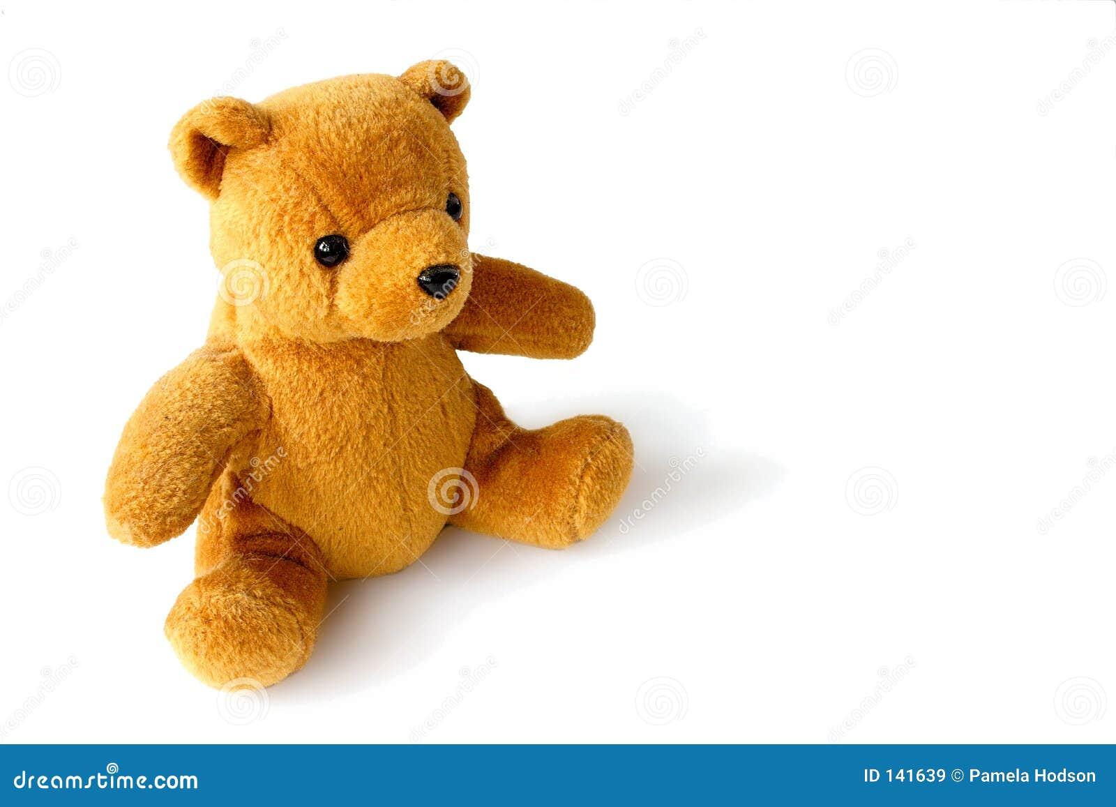 Złoty teddy bear