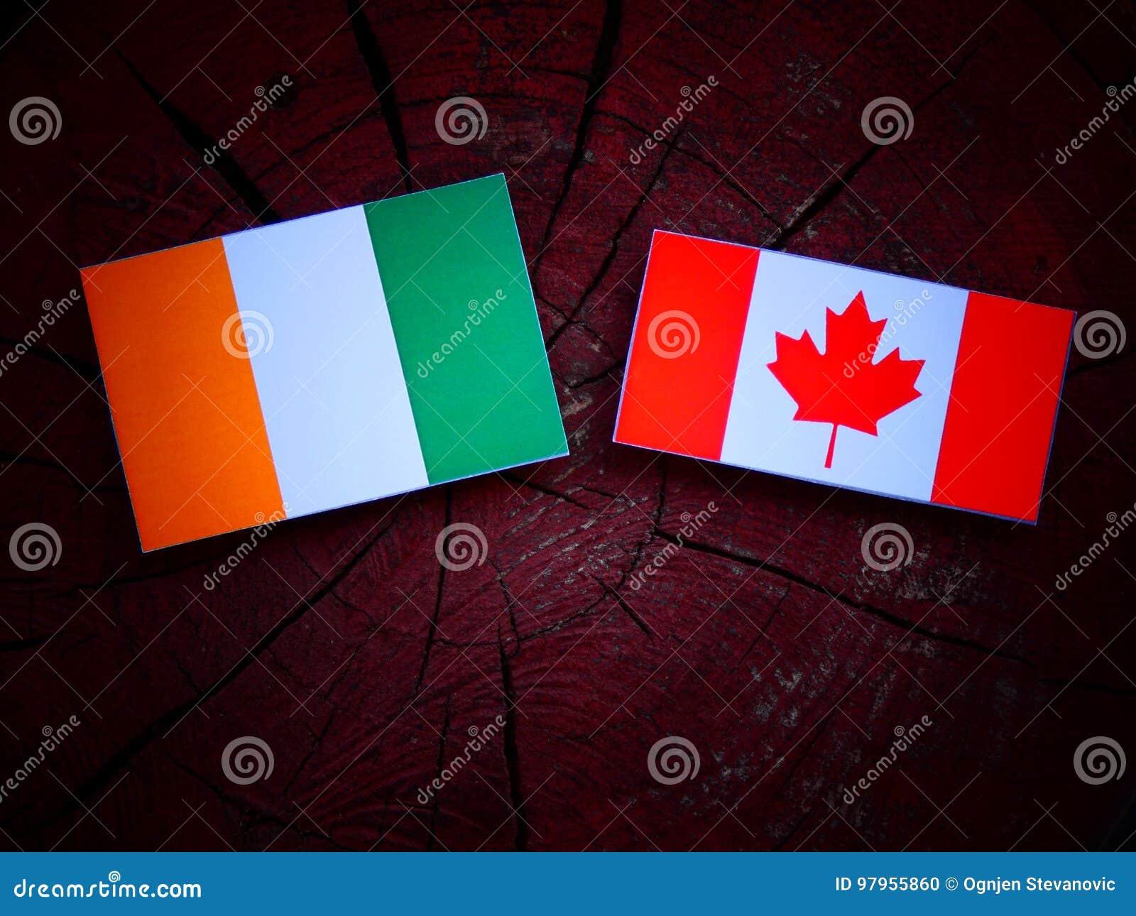 Z kości słoniowej wybrzeża flaga z kanadyjczyk flaga na drzewnym fiszorku odizolowywającym