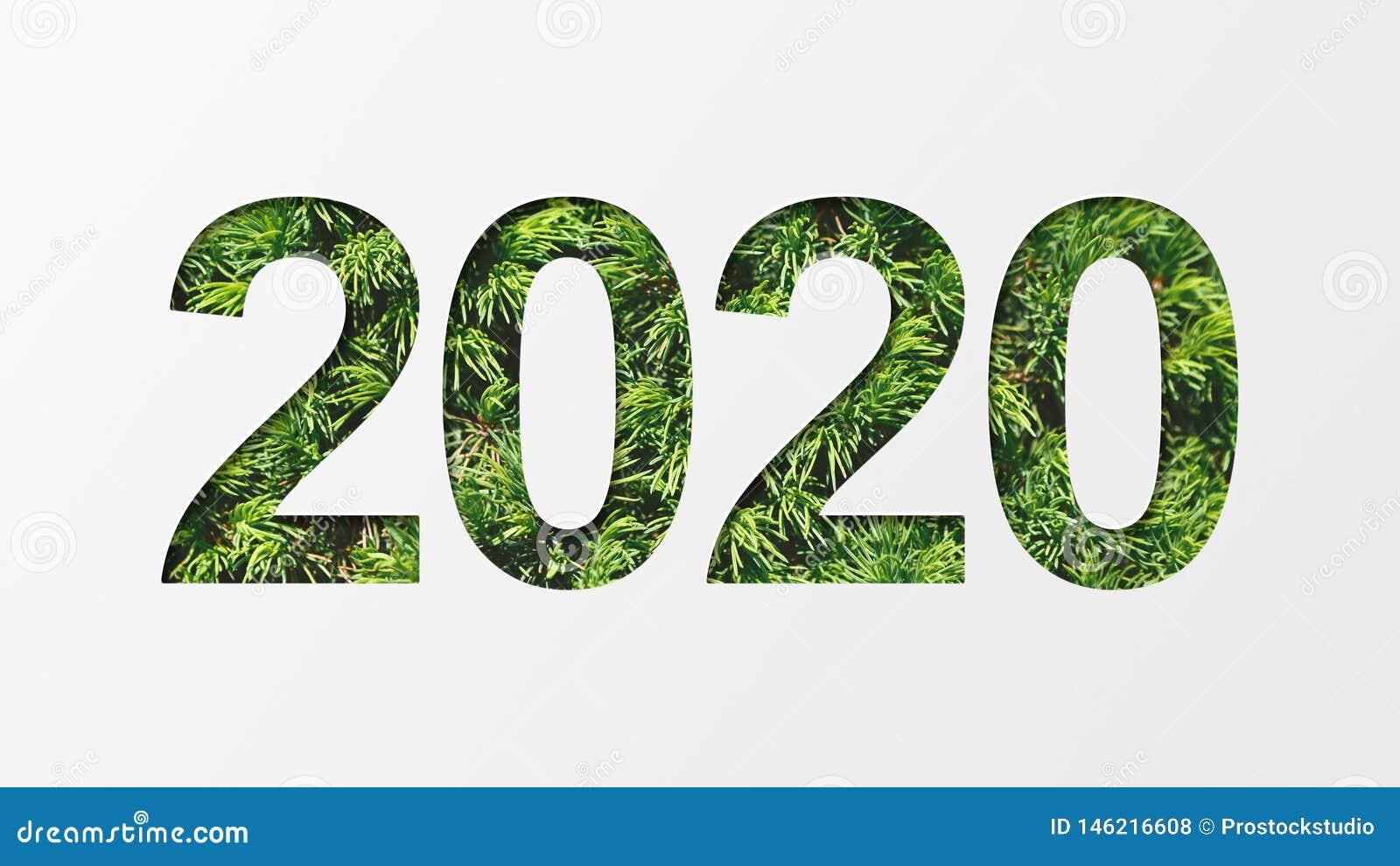 2020 z zieloną drzewną teksturą