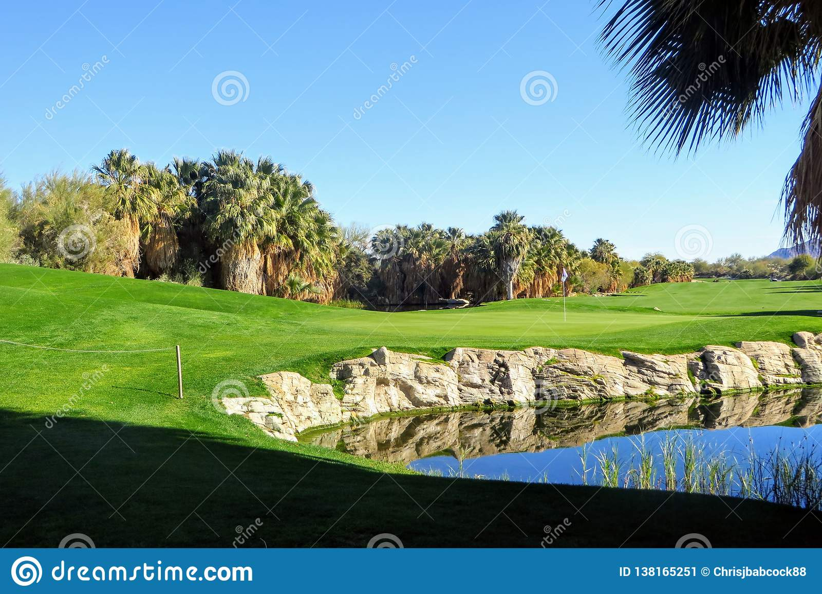 A za zielonym widokiem dziura otaczający piękna golfowa zieleń w palm springs i drzewkami palmowymi Kalifornia i stawem,