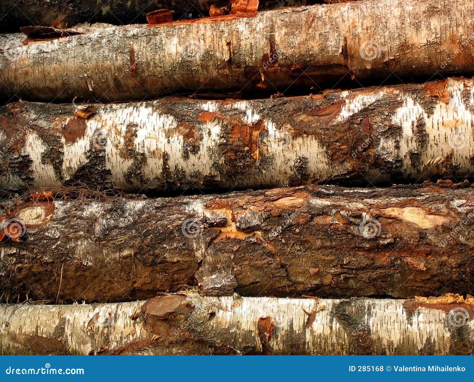 Zaag-hout 2