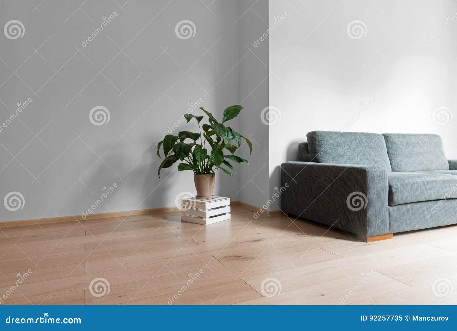 Houten Vloer Grijs : Zaal binnenland met heldere houten vloer met grijze muur moderne