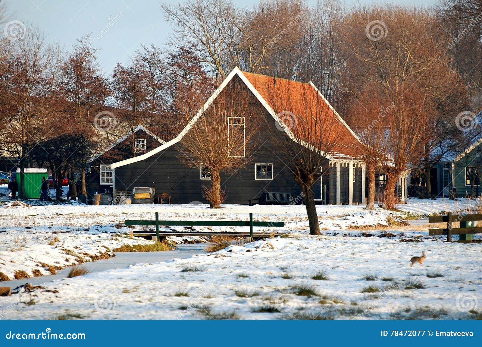 zaanse schans paesi bassi casa di campagna immagine stock immagine di freddo neve 78472077. Black Bedroom Furniture Sets. Home Design Ideas