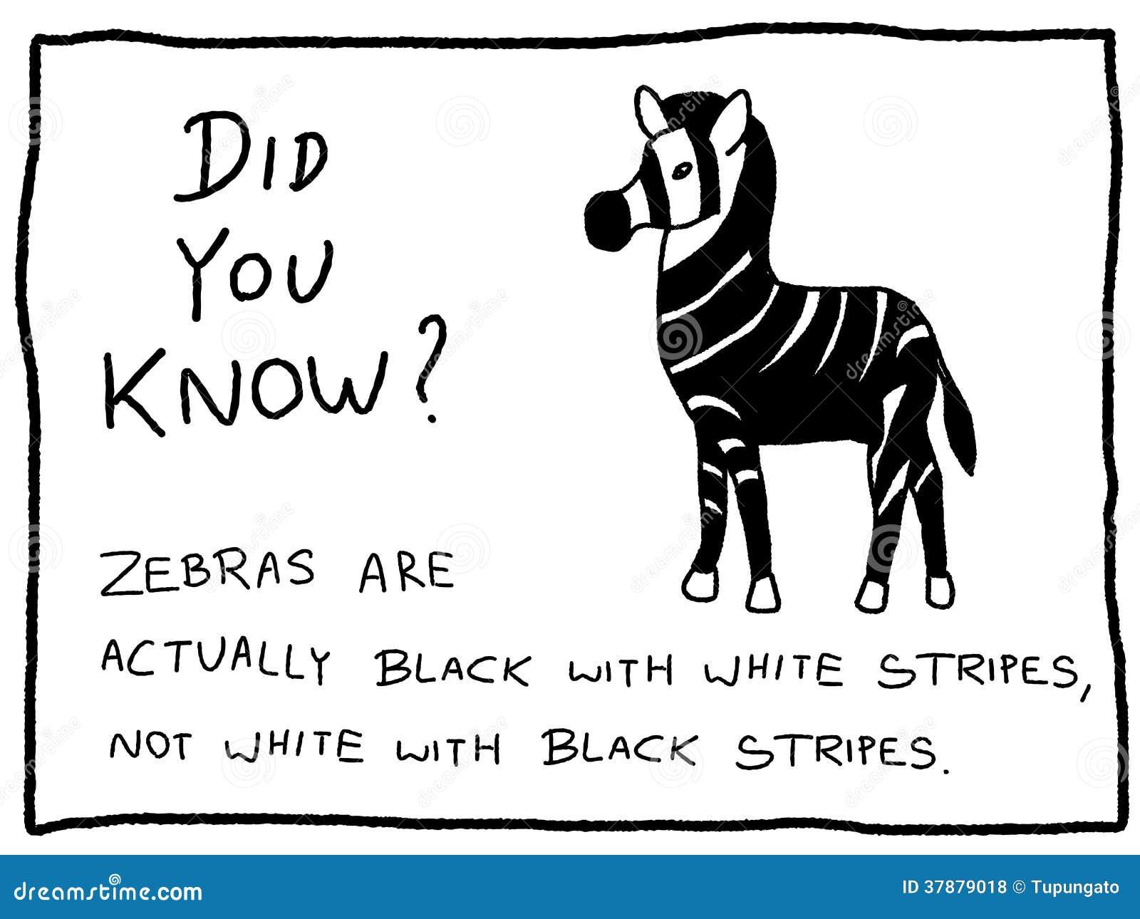 Zabawa fact