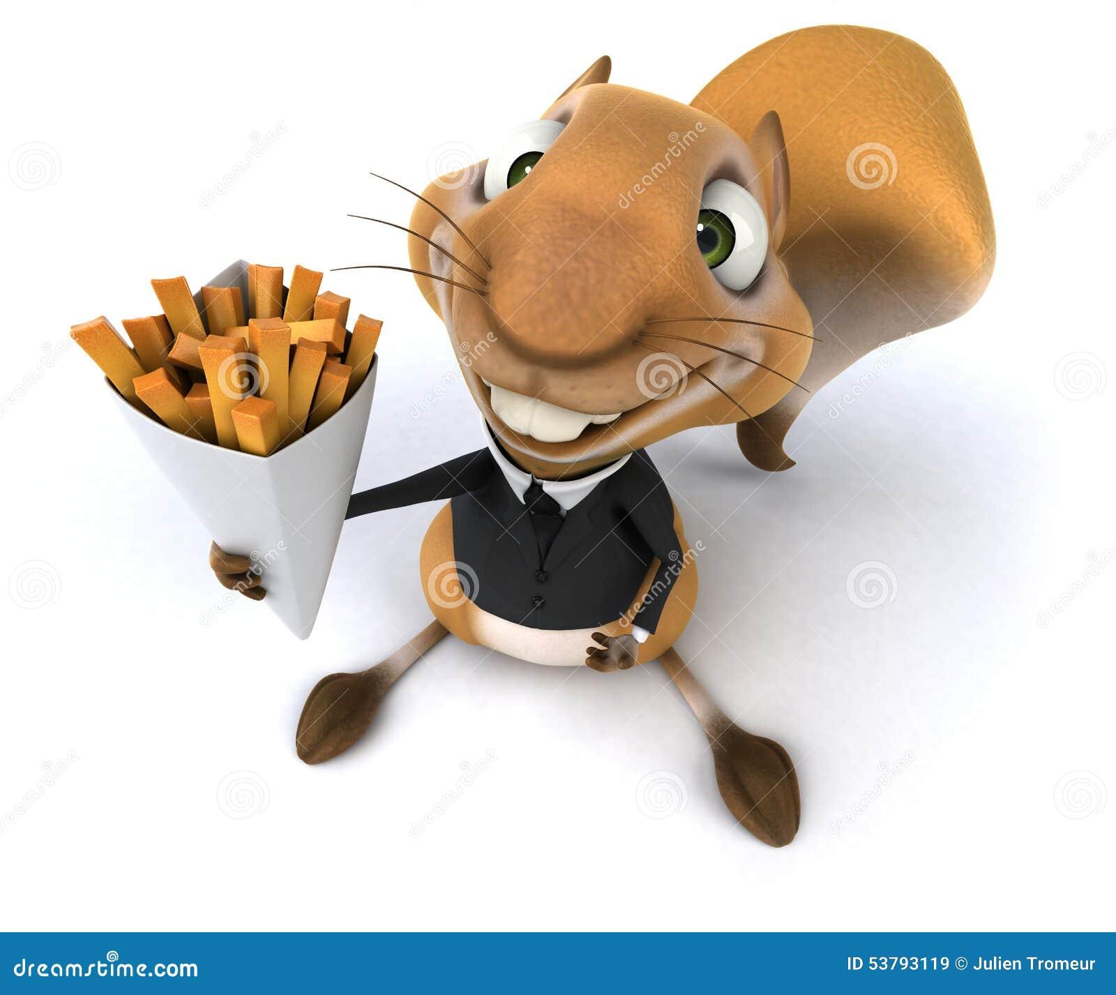 Zabawy wiewiórka