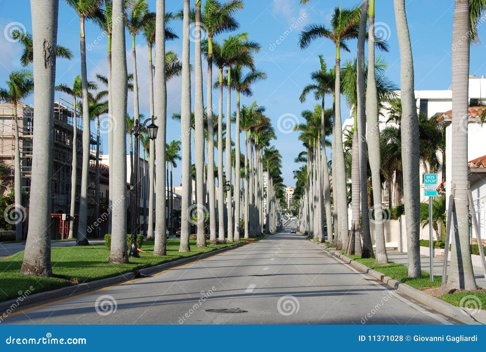 Zachodni plażowa 2007 palma Florida Styczeń