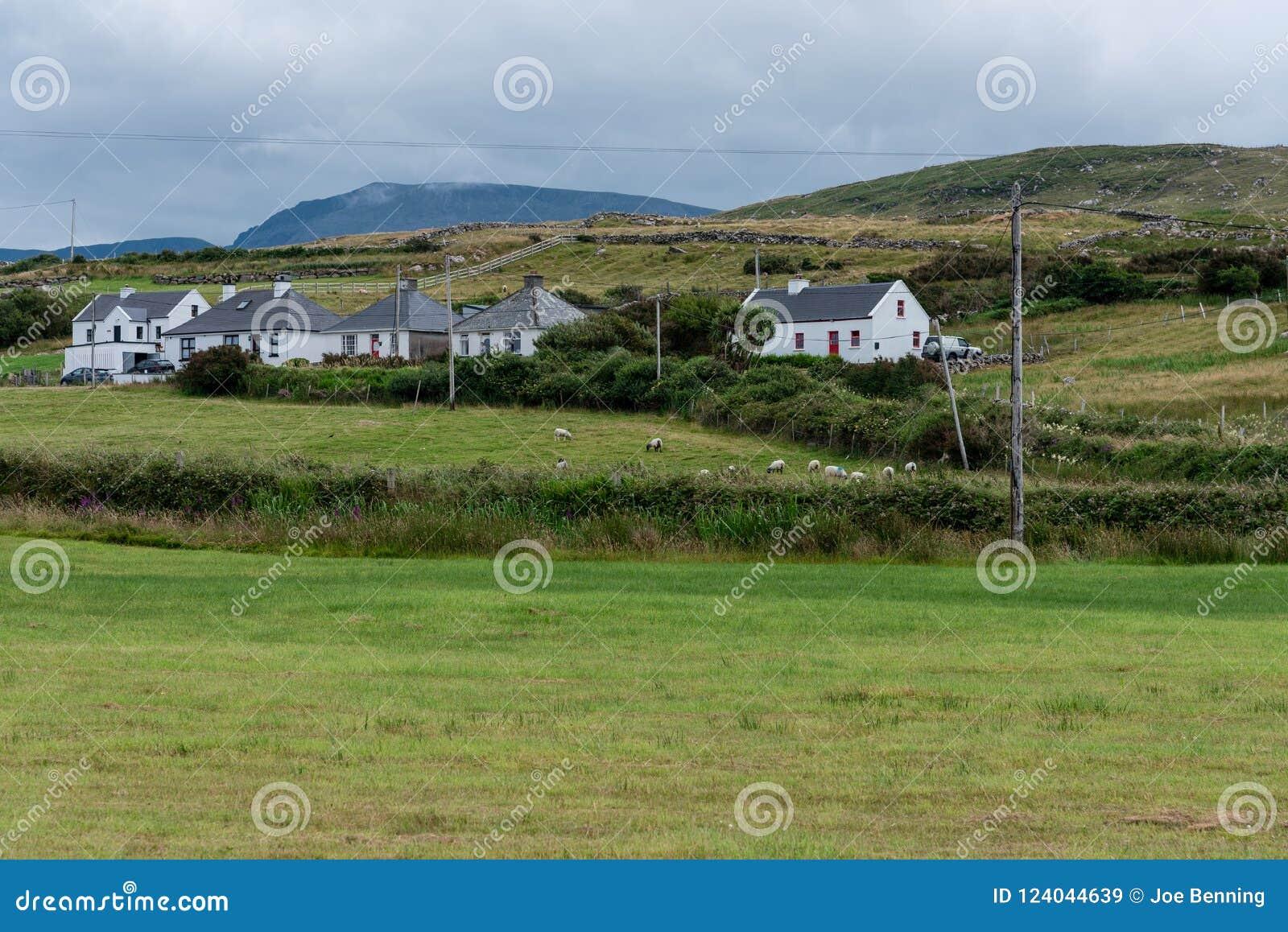 Zacht Landschap in het Ierse Platteland