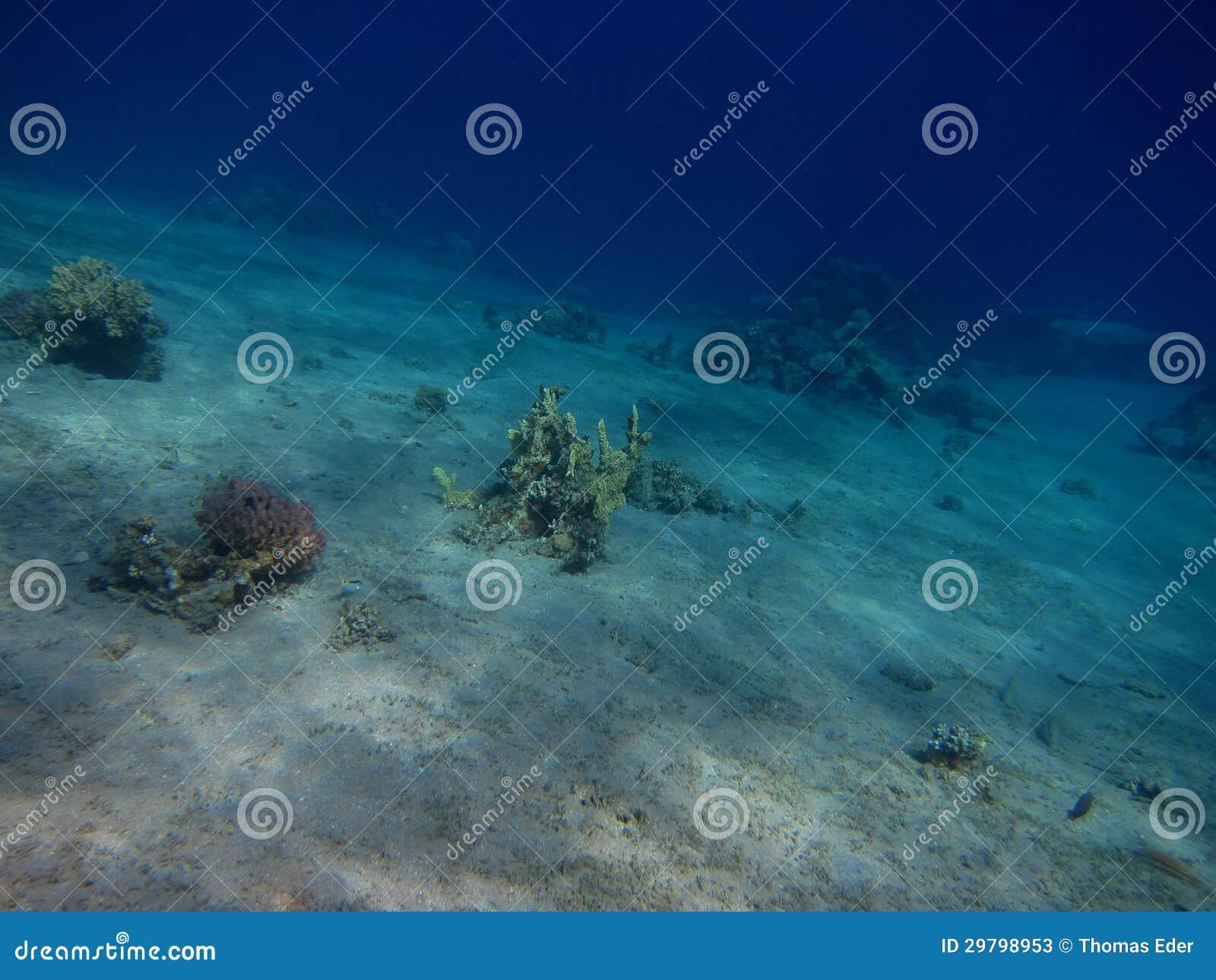 De grond rode overzees van het zand