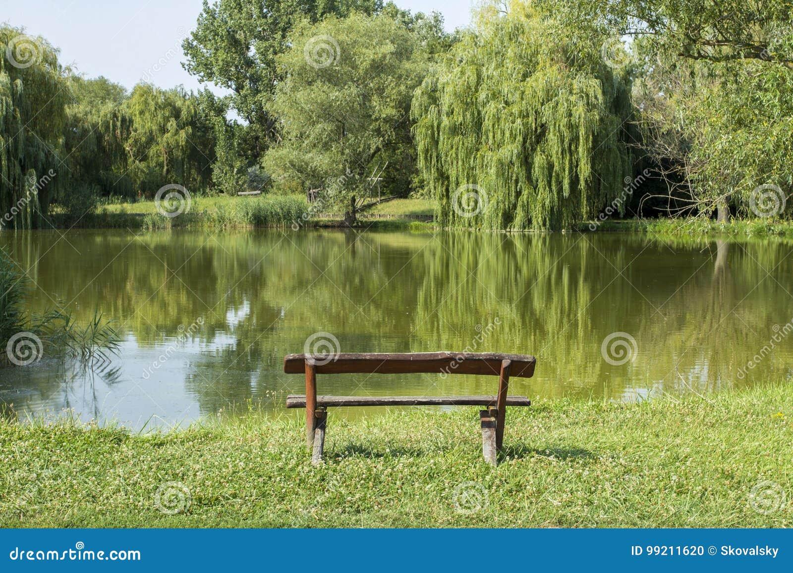 Zaciszność park