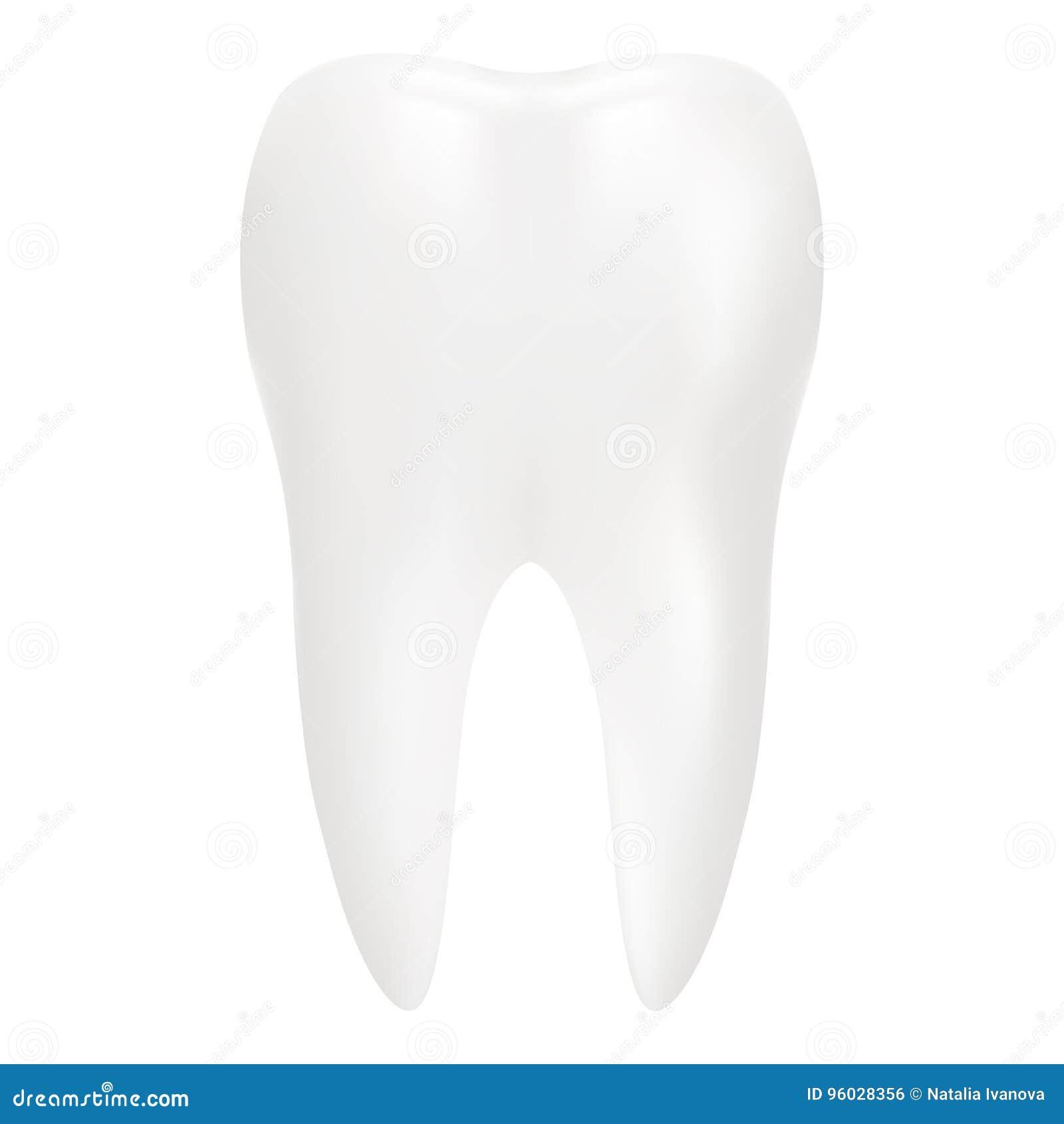 Zahn, 3D übertragen Zahnmedizinisches, Medizin-und Gesundheits ...