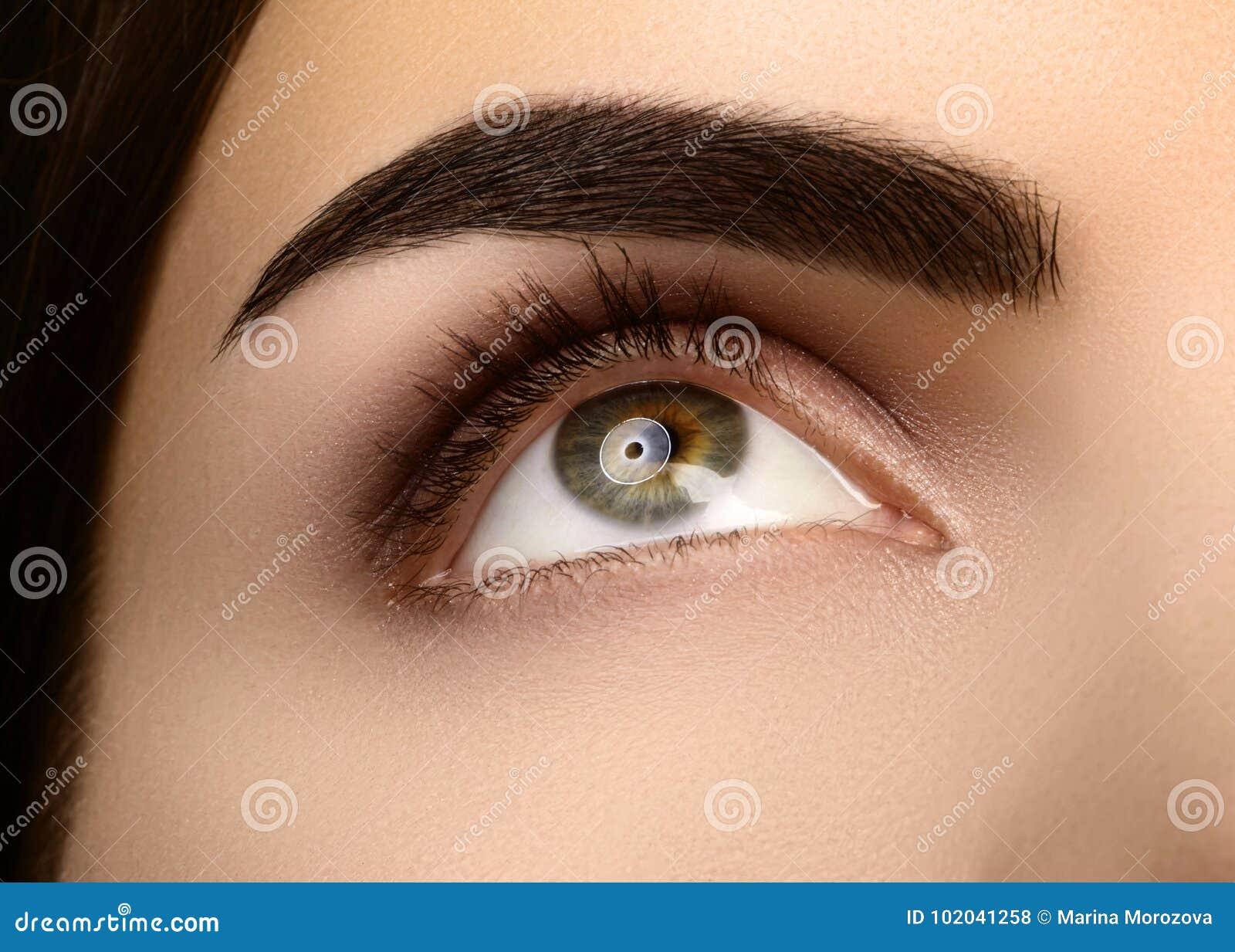 Zakończenia piękno kobiety ` s oko Seksowny dymiący oka Makeup z brown Eyeshadows Perfect silny kształt brwi