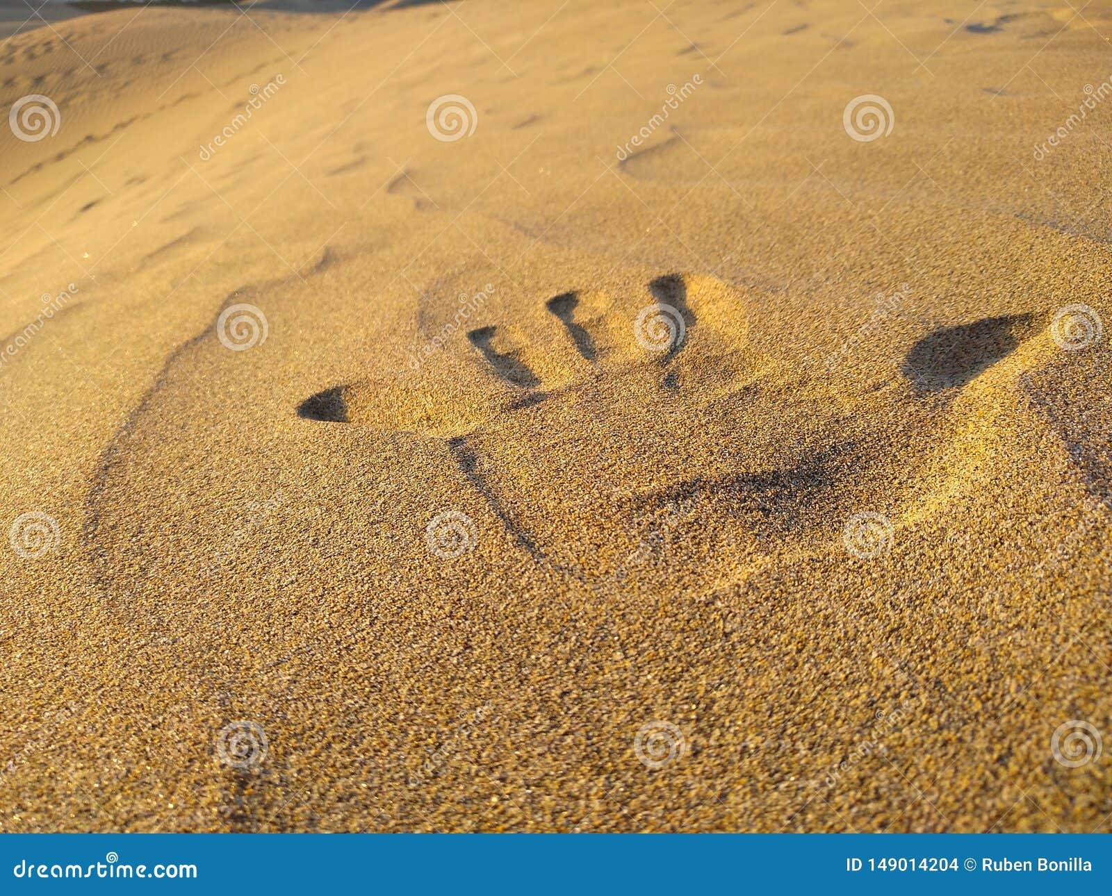 Zako?czenie w g?r? r?ka druku lewor?czny na z?otym piasku diuna pustynia linii brzegowej zielonej horyzontalnej wizerunku fotogra