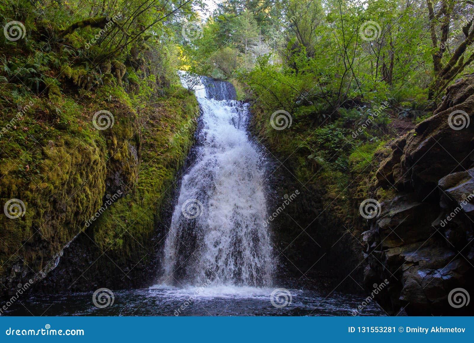 Zakończenie w górę widoku Bridal przesłona spada, Oregon