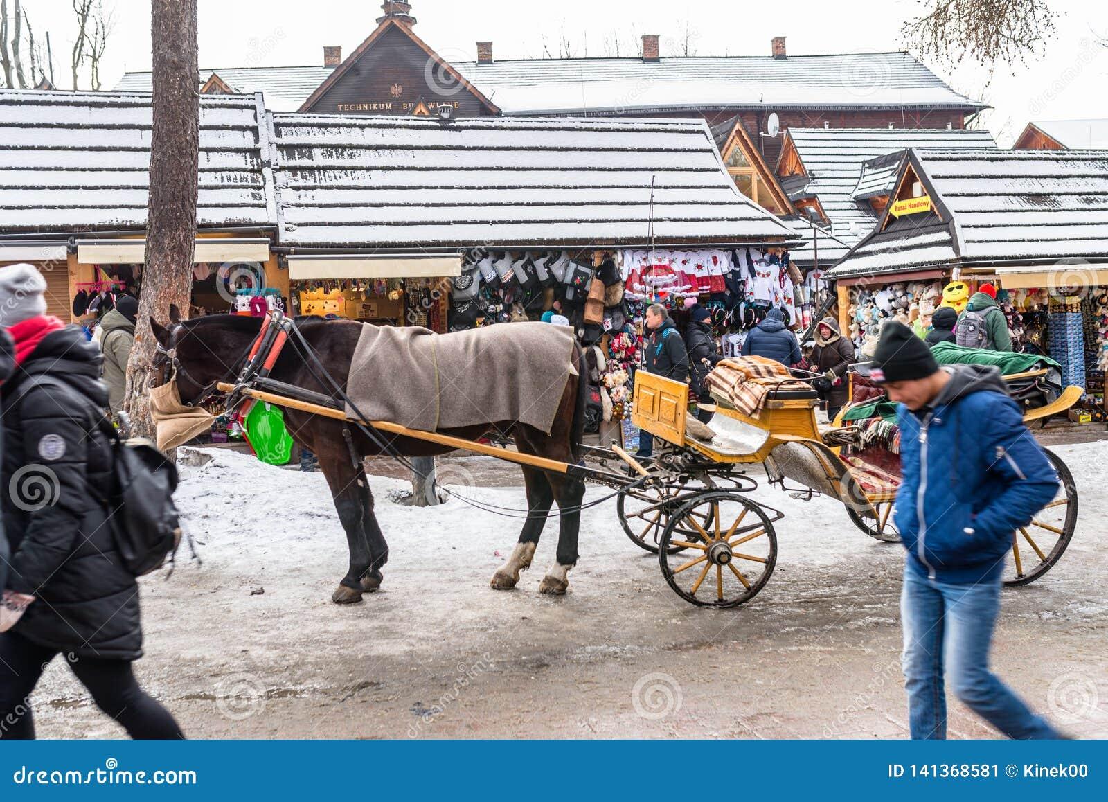 Zakopane, Polonia - 21 febbraio 2019 Trasporto del cavallo, stante sulla via di Krupowki in Zakopane
