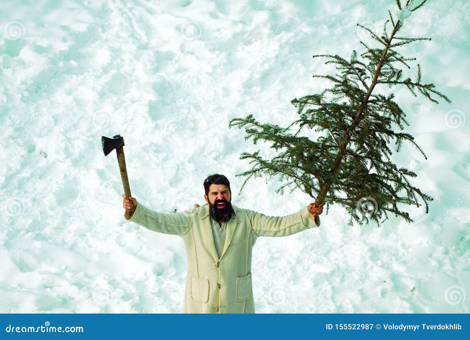 Zakup i dostawa conifer na wigilii Zimy emocja Przystojny młody człowiek z brodą niesie boże narodzenia