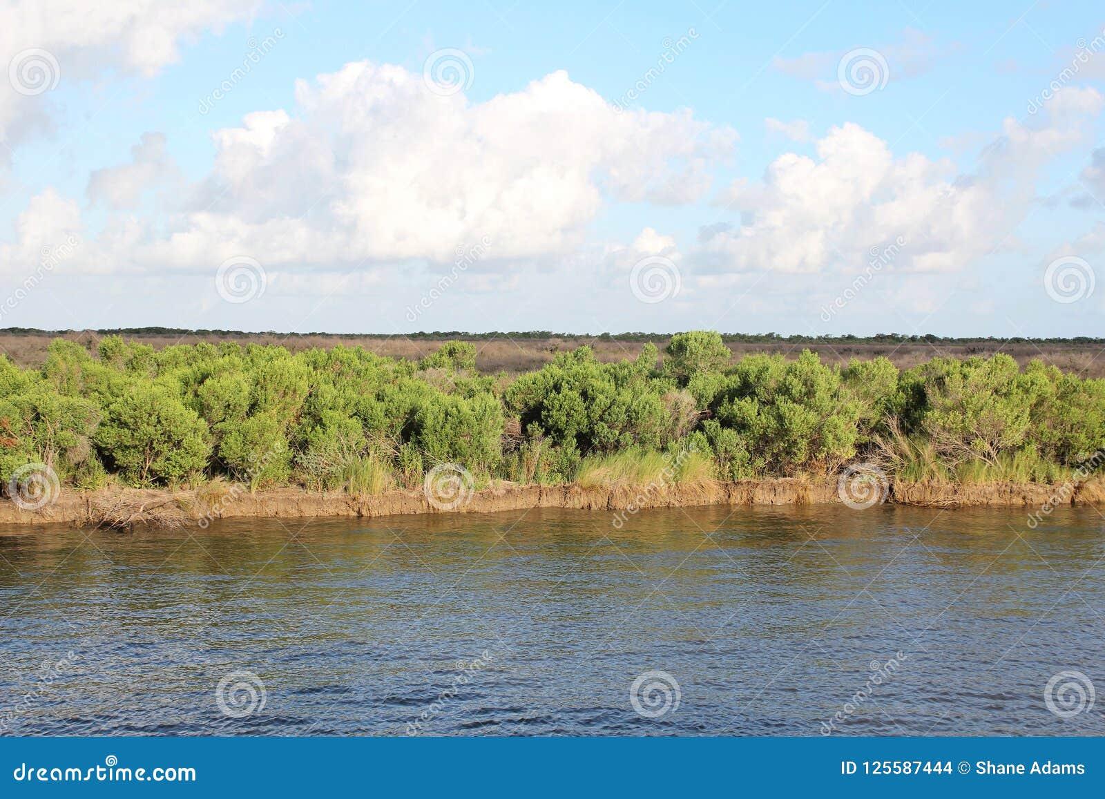 Zalewisko Lafourche, Luizjana