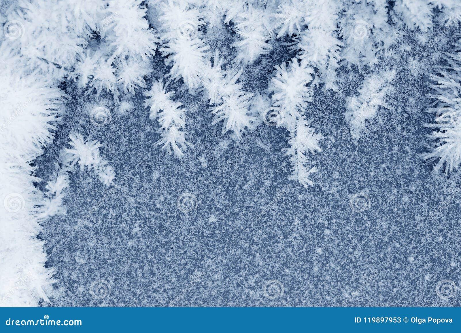 Zamarznięci lodowi kryształy na ziemi
