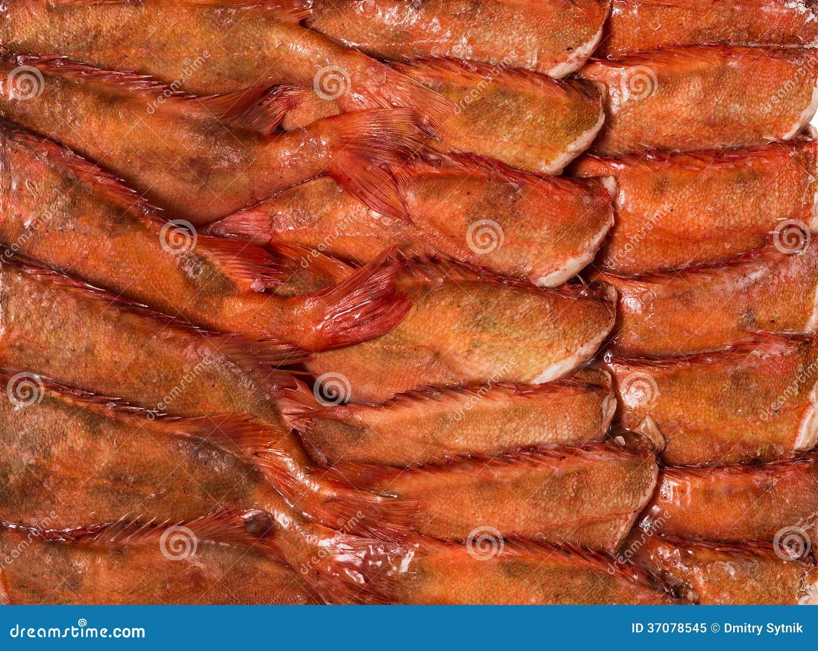 Download Zamarznięta ścierwo Ryba W Cegle Dla Handlu I Tła Obraz Stock - Obraz złożonej z ścierwo, marznący: 37078545