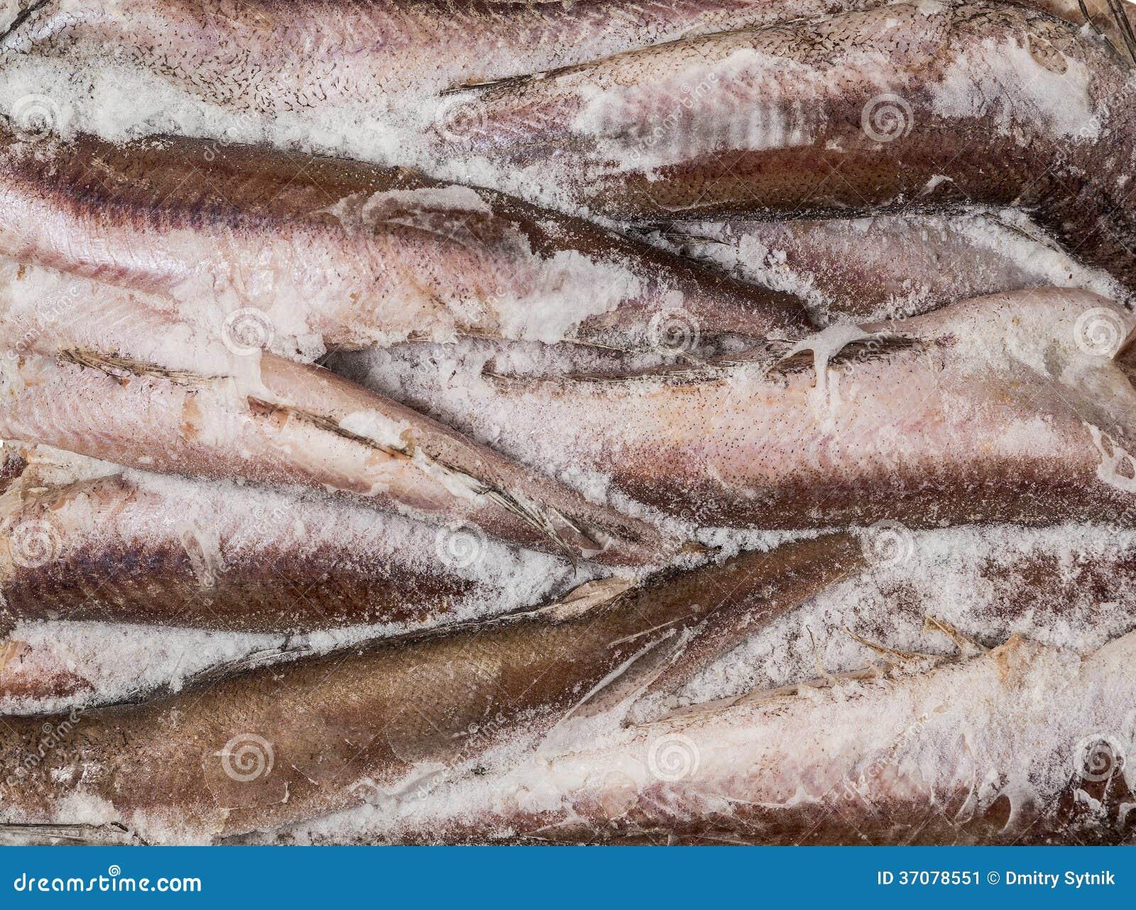 Download Zamarznięta ścierwo Ryba W Cegle Dla Handlu I Tła Obraz Stock - Obraz złożonej z zdrowy, odżywczy: 37078551