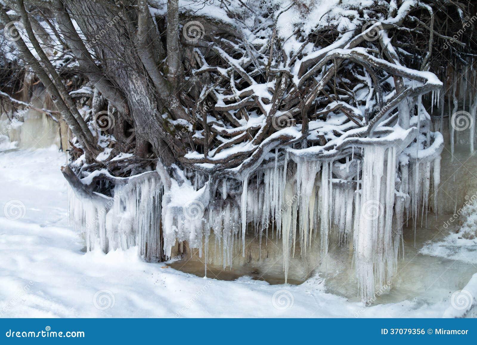 Download Zamarznięta natura zdjęcie stock. Obraz złożonej z estonia - 37079356