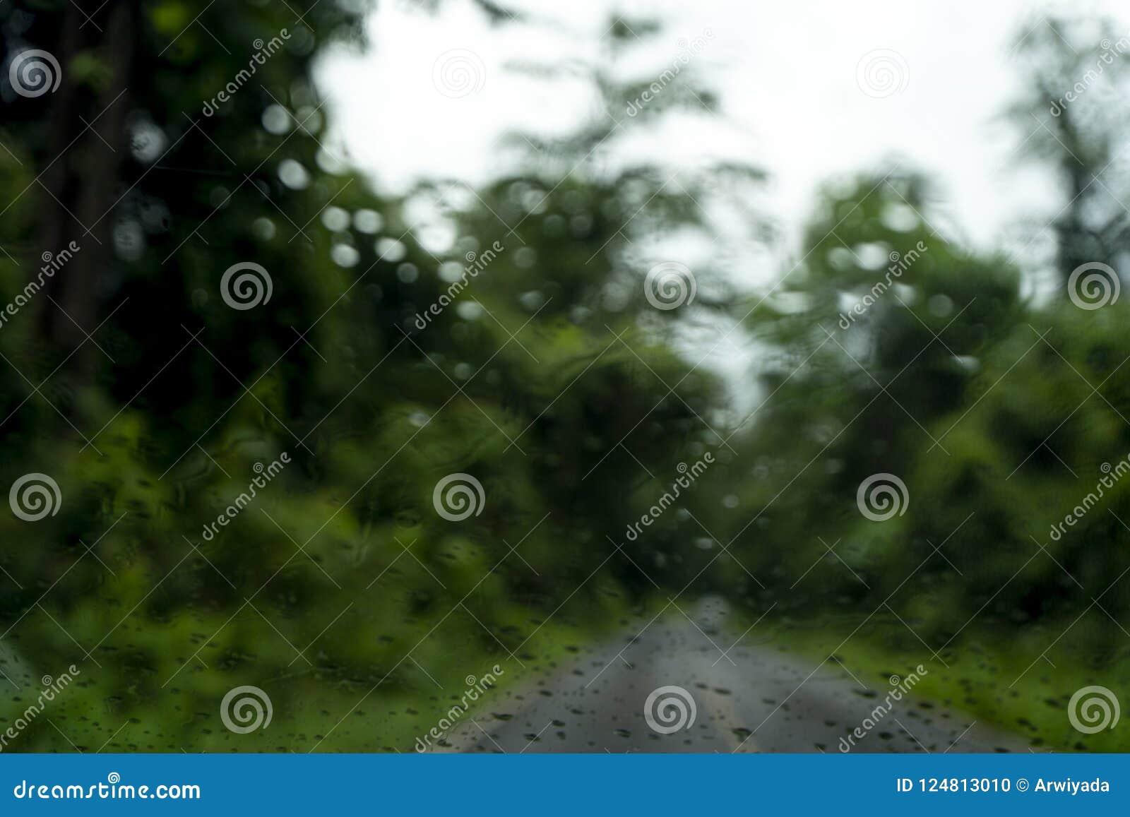 Zamazany park z bokeh światłem długi droga w padać dzień dalej