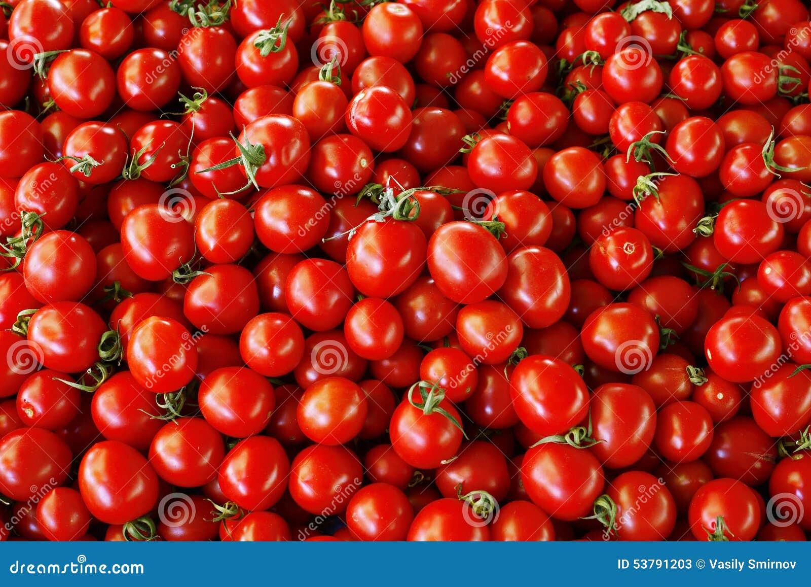 Zamknięty rozsypisko zamknięci pomidory