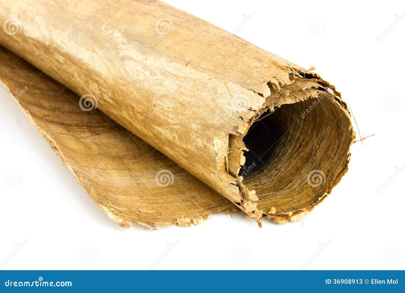 Zamyka up egipcjanina papieru płocha