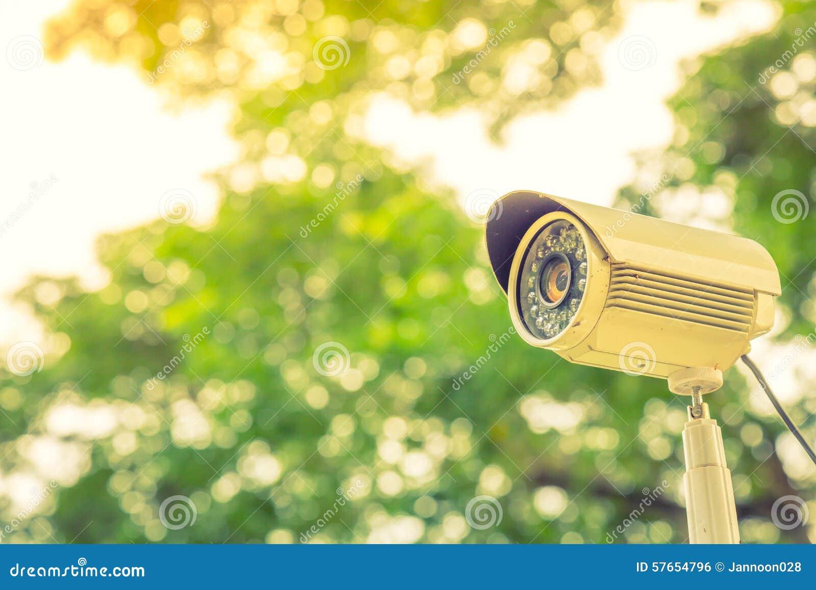 Zamyka up ochrony inwigilacja (Filtrujący wizerunków procesy