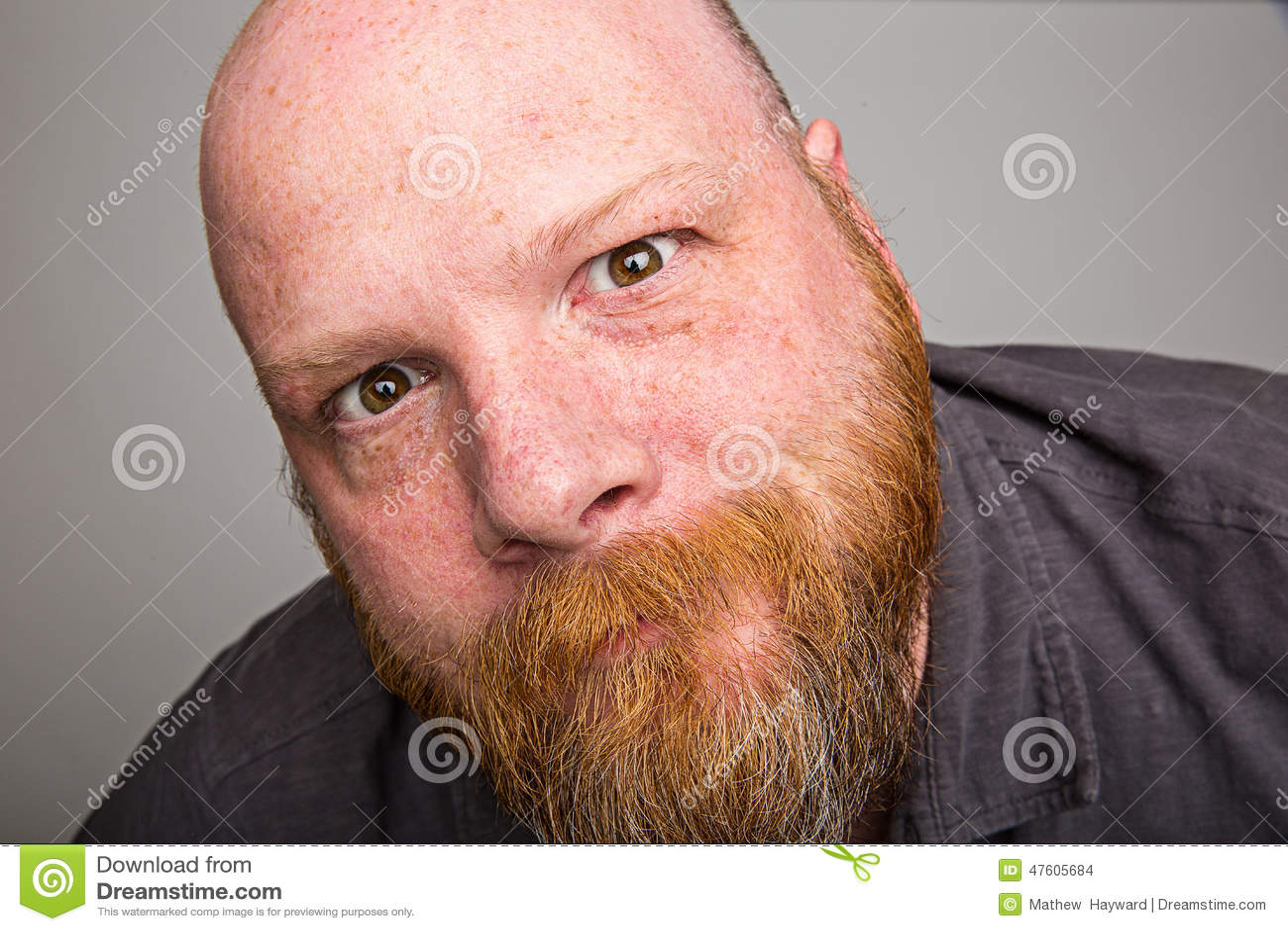 Zamyka w górę brody twarzy