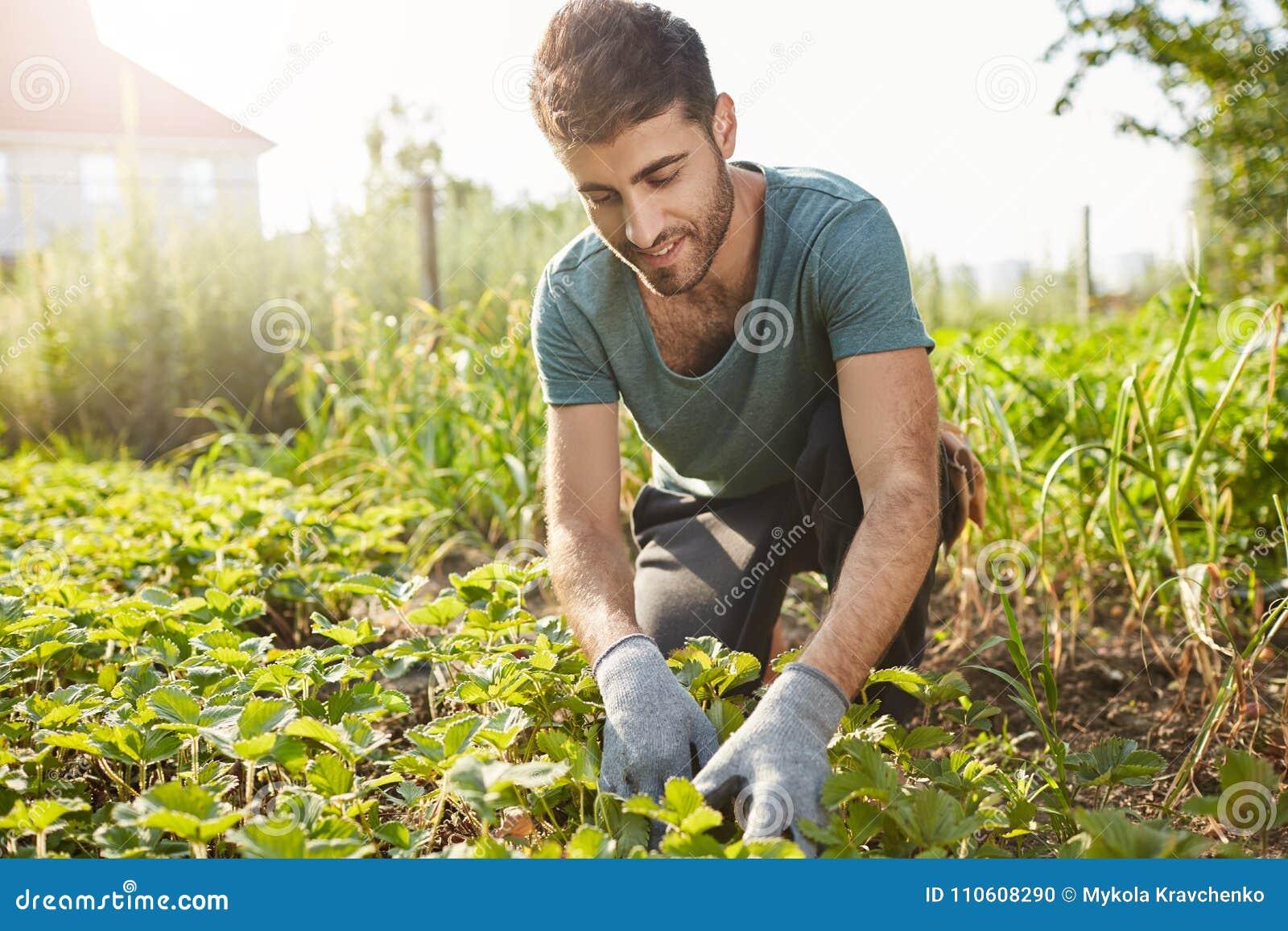 Zamyka w górę outdoors portreta dojrzały atrakcyjny brodaty męski rolnik ono uśmiecha się w błękitnej koszulce, pracuje na gospod