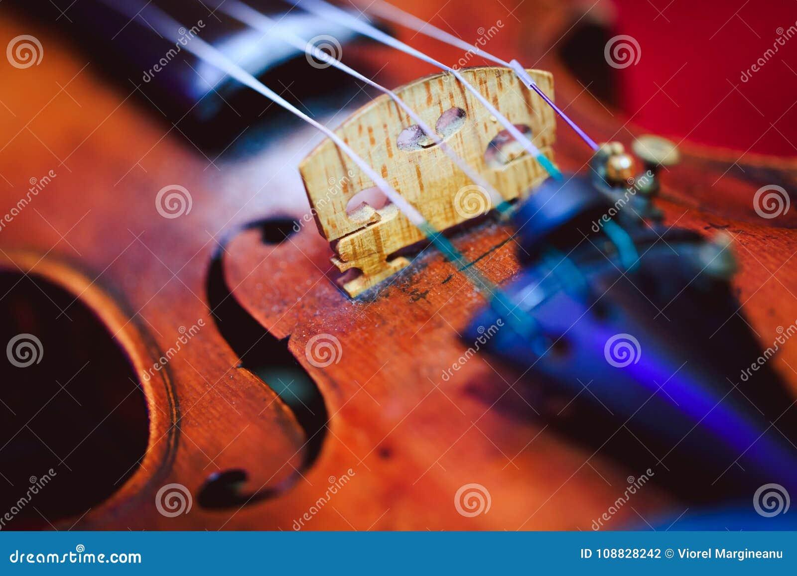 Zamyka w górę strzału skrzypce, płycizna pole głęboko