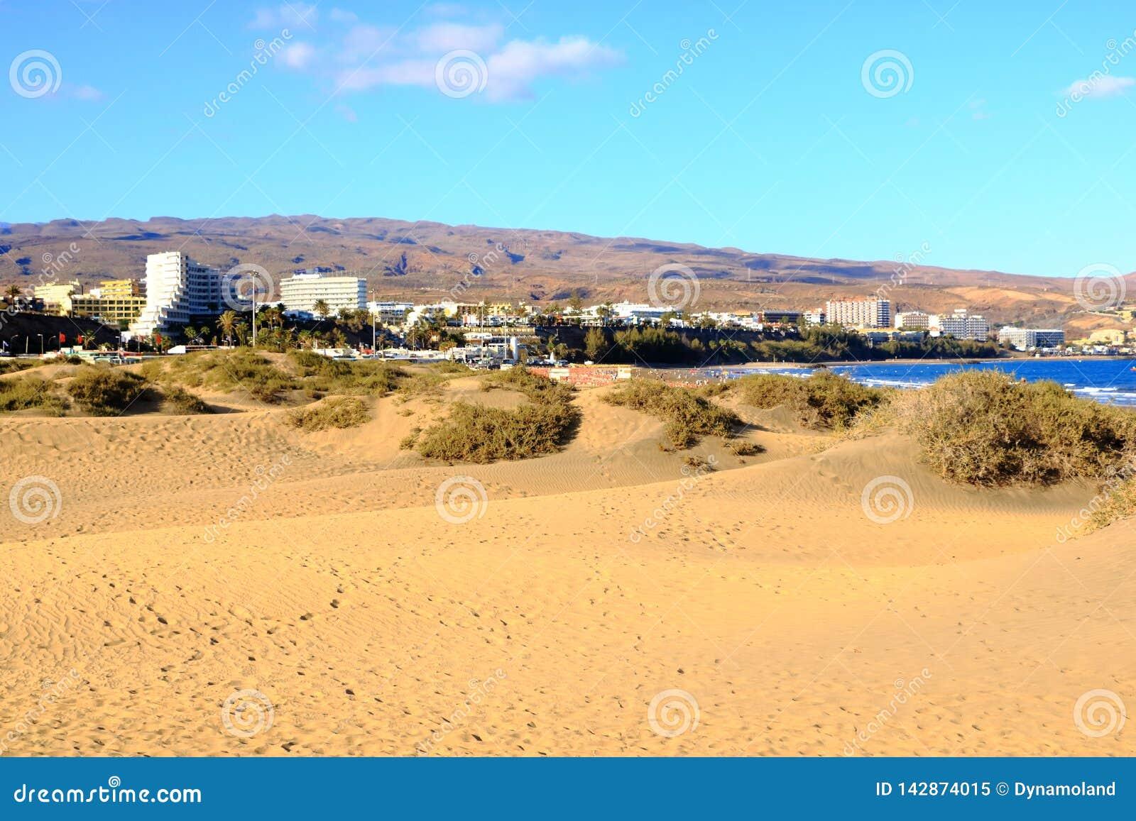 Zandige duinen in beroemd natuurlijk Maspalomas-strand Gran Canaria spanje