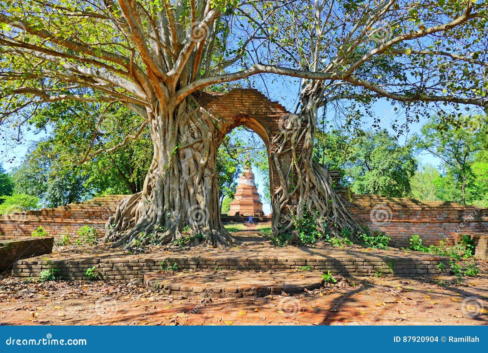 Zaniechane Antyczne Buddyjskiej świątyni ruiny Wat Phra Ngam od Opóźnionego Ayutthaya okresu w Historycznym mieście Ayutthaya, Ta