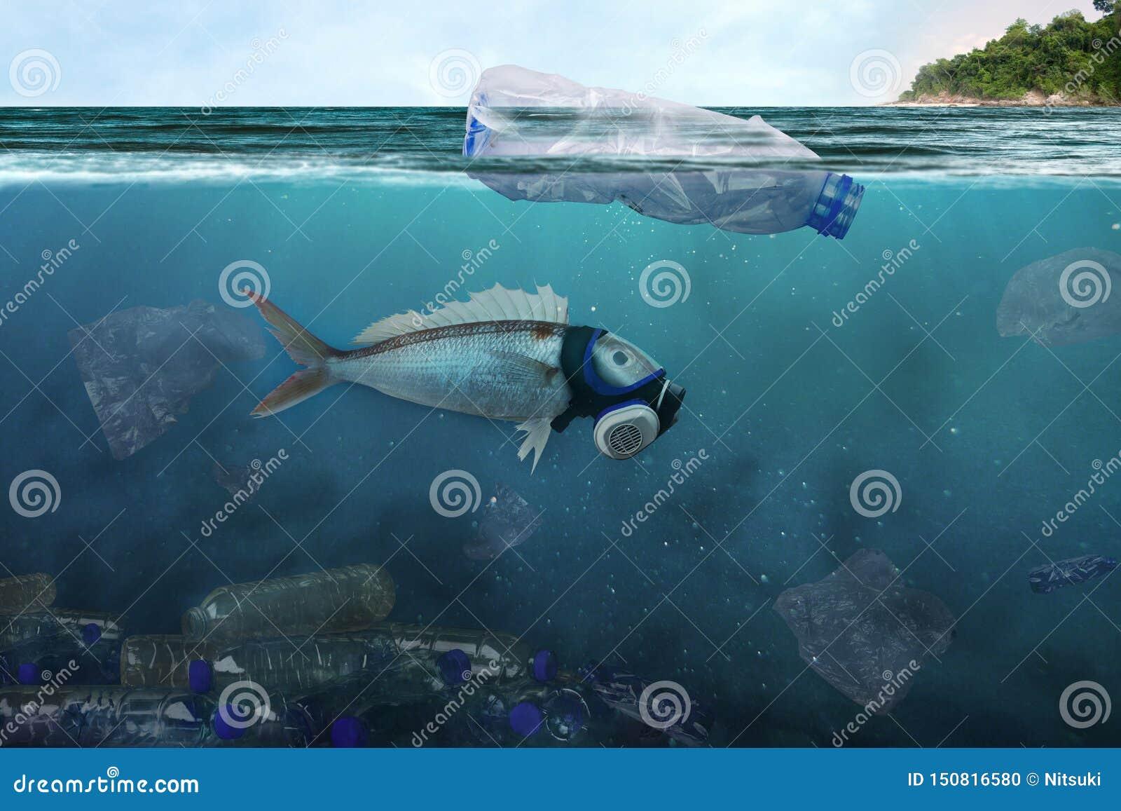 Zanieczyszczenie przemysł i Zły środowisko w oceanie