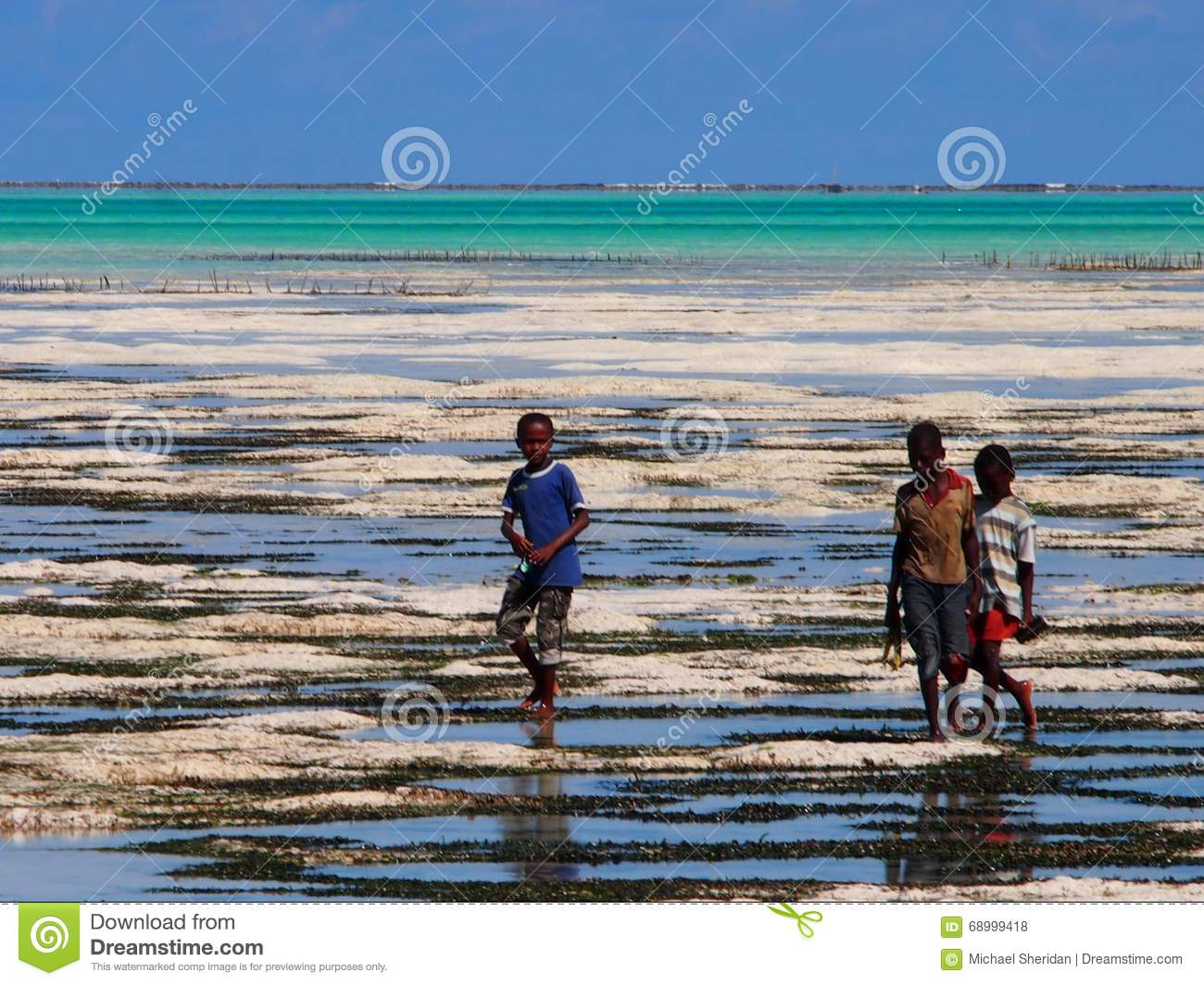 Zanzibar Locals Walking Out To Sea At Low Tide Editorial Stock Photo