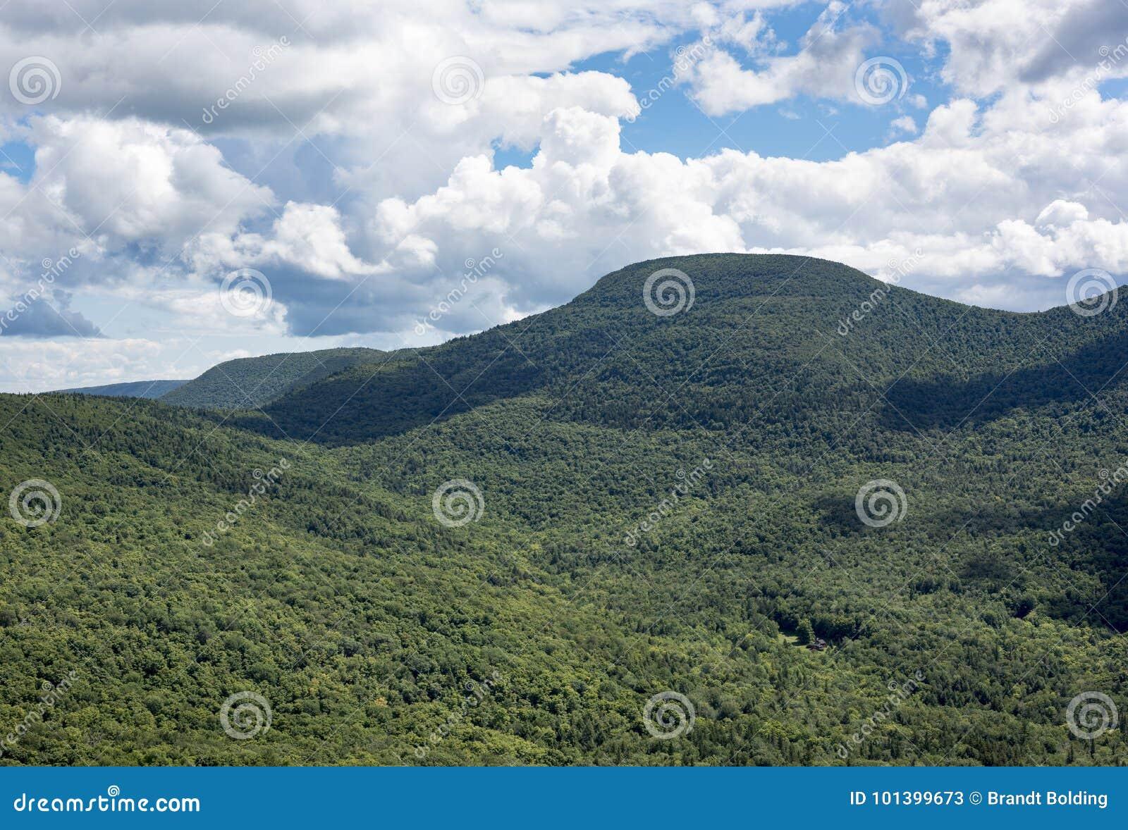 Zaskórnika szczyt w Catskill górach w lecie
