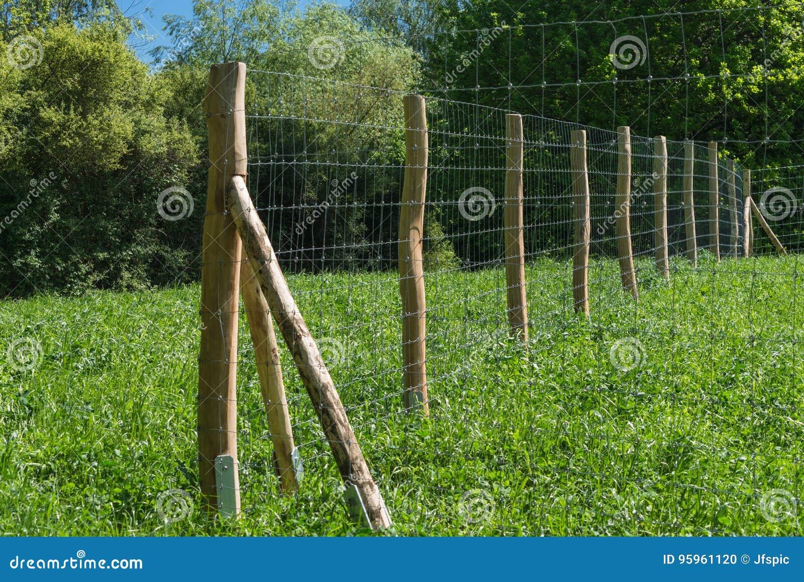 Zaun einer Weide stockfoto Bild von blau nave trocken