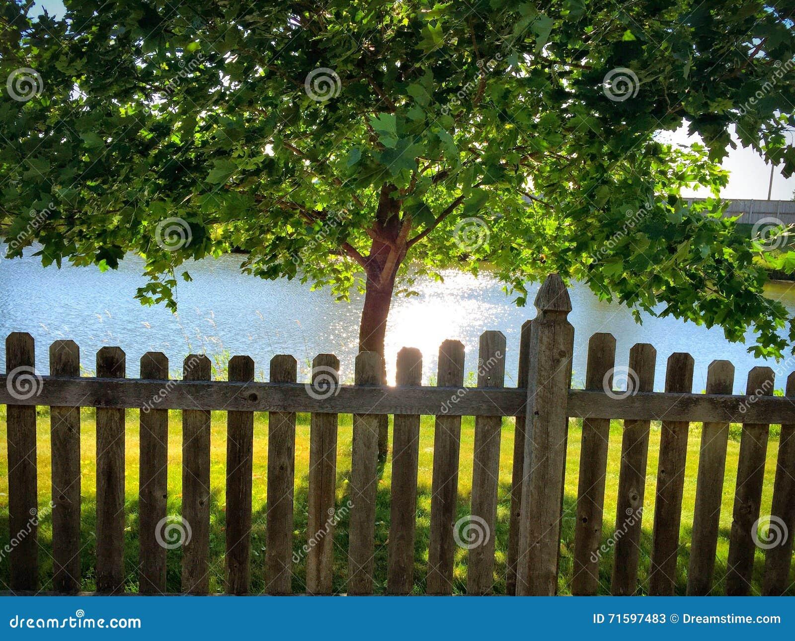 Zaun Entlang Einem Teich