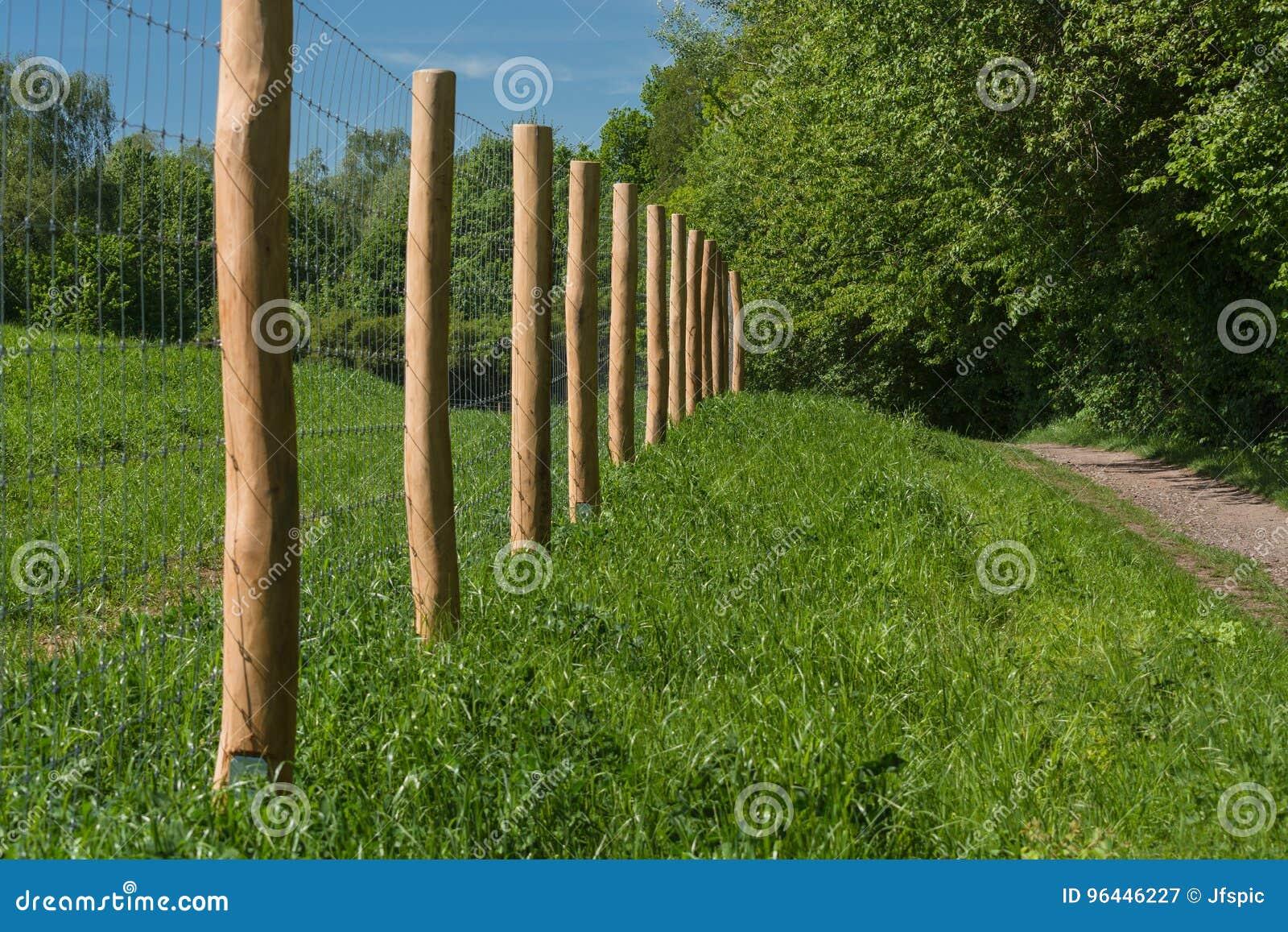 Zaun Von Einer Weide Fence A Pasture Stock Image