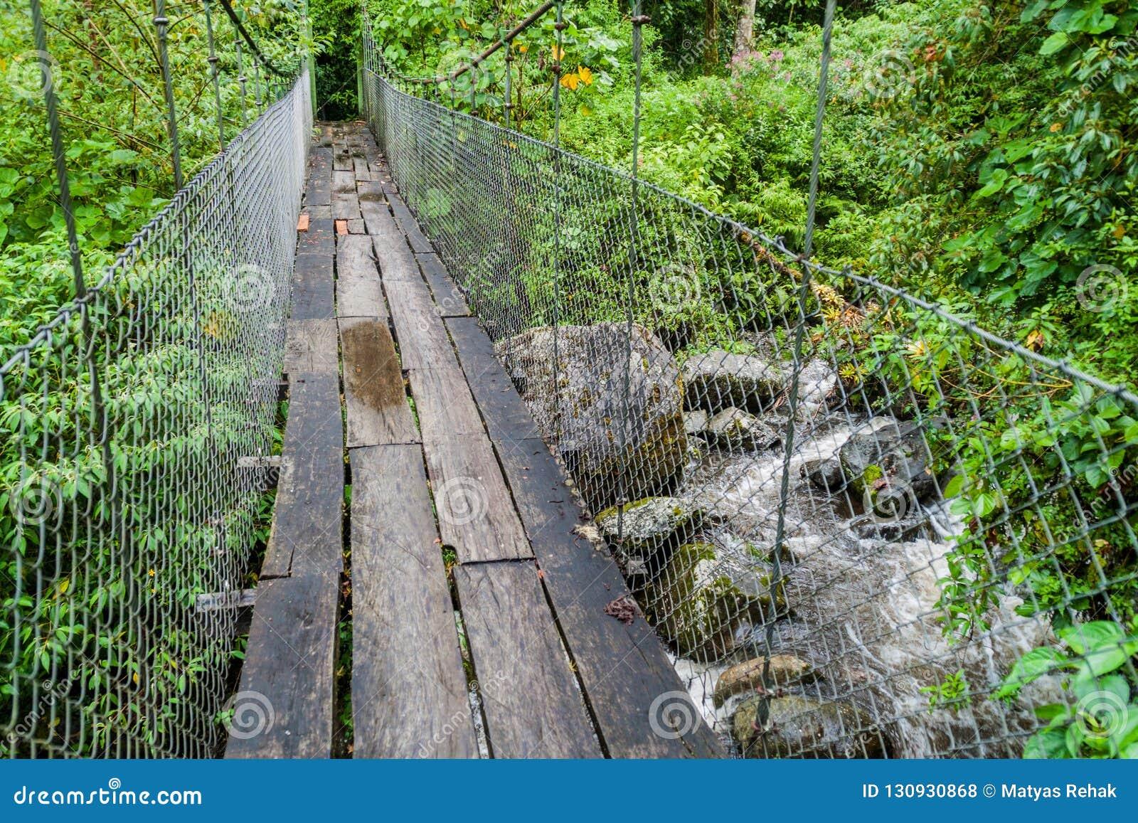 Zawieszenie most przy wycieczkuje śladem Sendero Los Quetzales w parku narodowym Volcan Bar podczas pory deszczowej, Panam