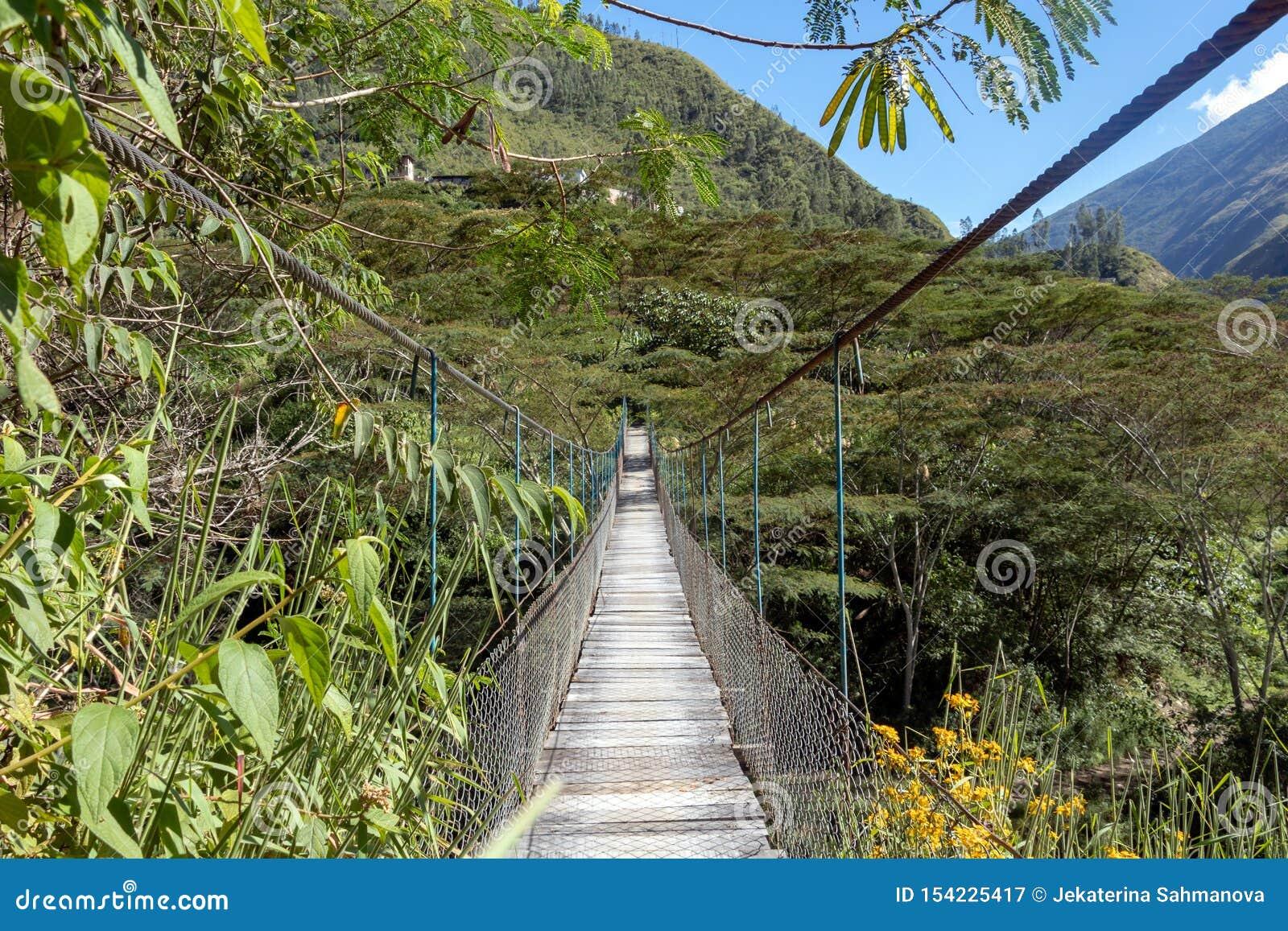 Zawieszony bridżowy obwieszenie nad Santa Teresa rzeka w zielonej luksusowej dolinie Wędrówka Mach Picchu, Peru