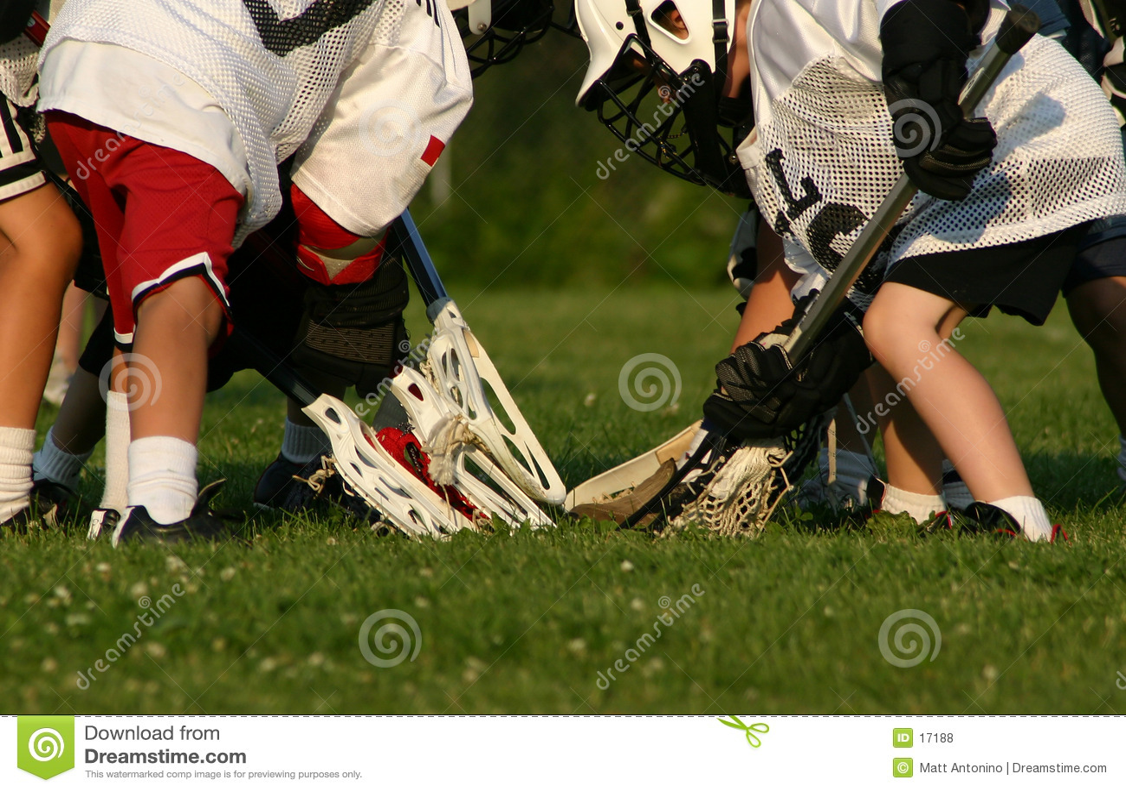 Zawodnicy lacrosse   a