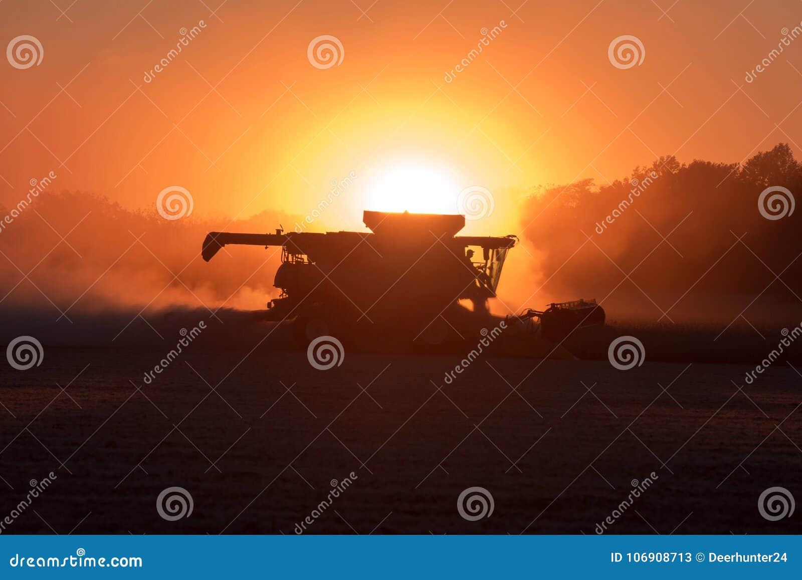 Zbierający zakurzonego soi pole, przy zmierzchem