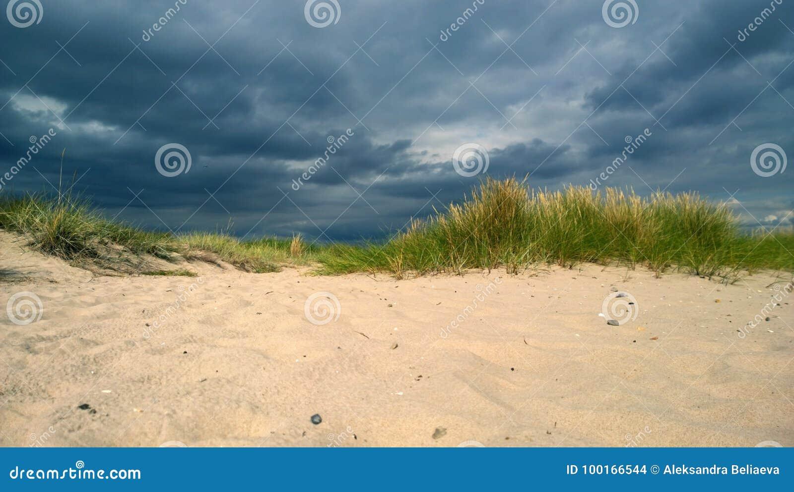 Zbliża się burzy chmura na plaży z diunami i czystym białym piaskiem